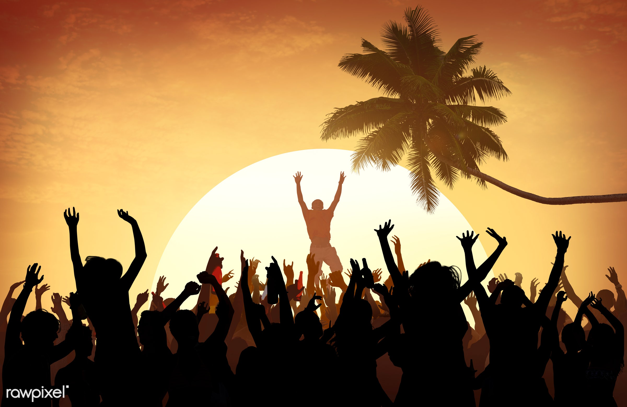 concert, adolescence, arms outstretched, arms raised, audience, back lit, beach, carefree, celebration, cheerful, coconut...