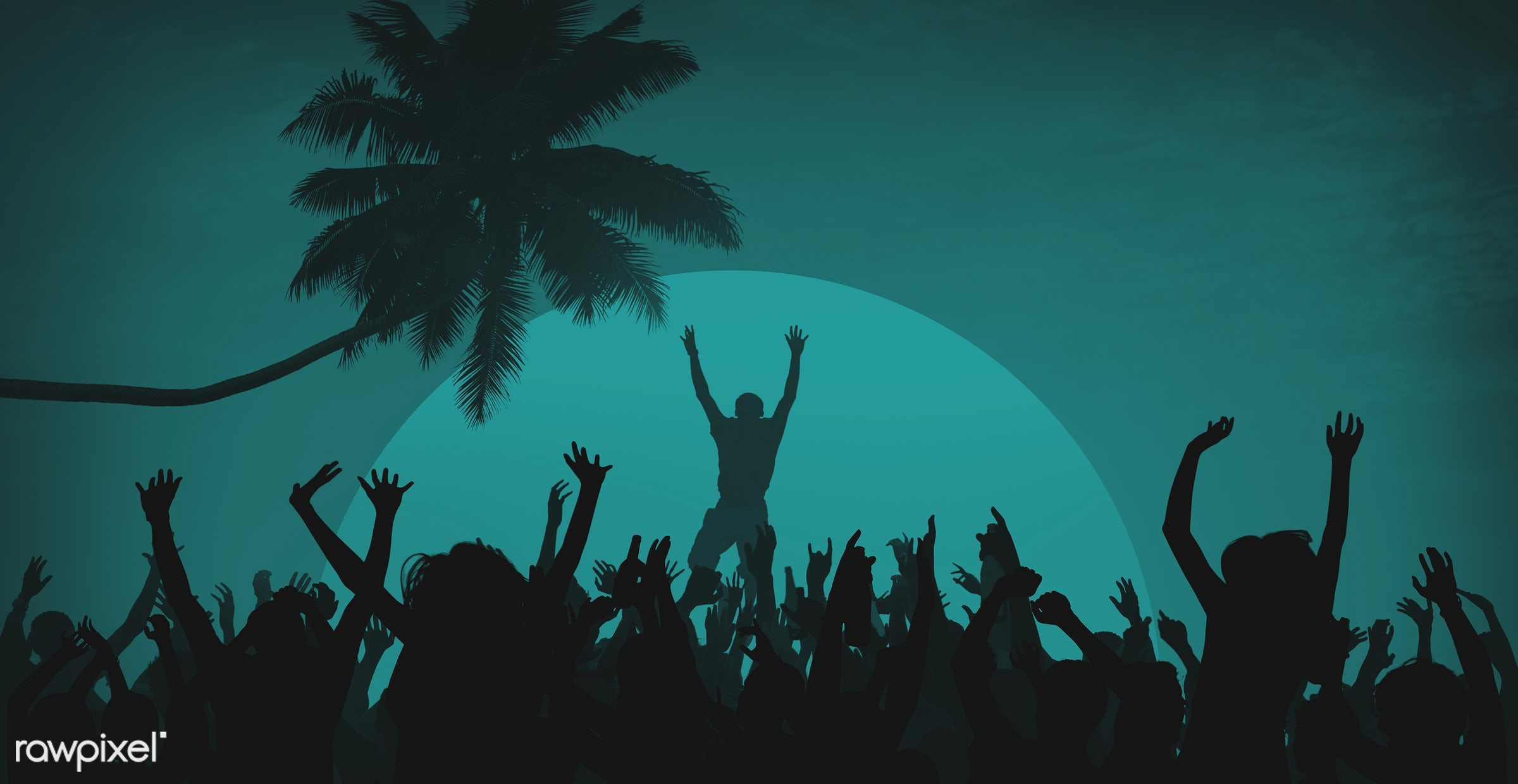 adolescence, arms outstretched, arms raised, audience, back lit, beach, carefree, celebration, cheerful, coconut palm tree,...