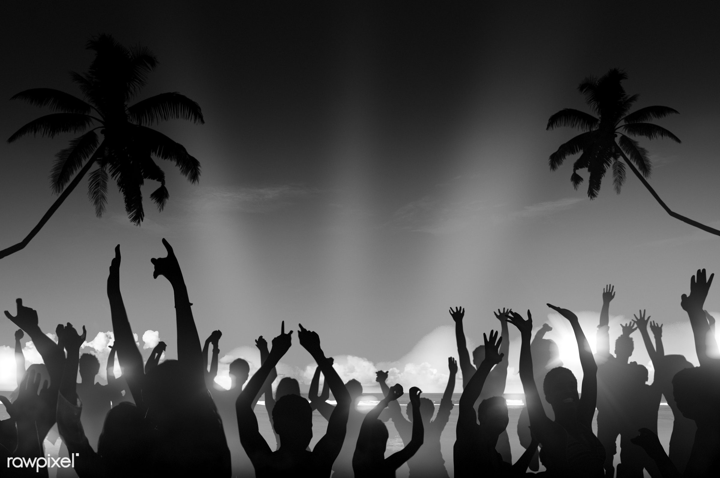 dusk, alcohol, arms outstretched, arms raised, back lit, beach, beer, blue, celebration, coconut palm tree, community, copy...