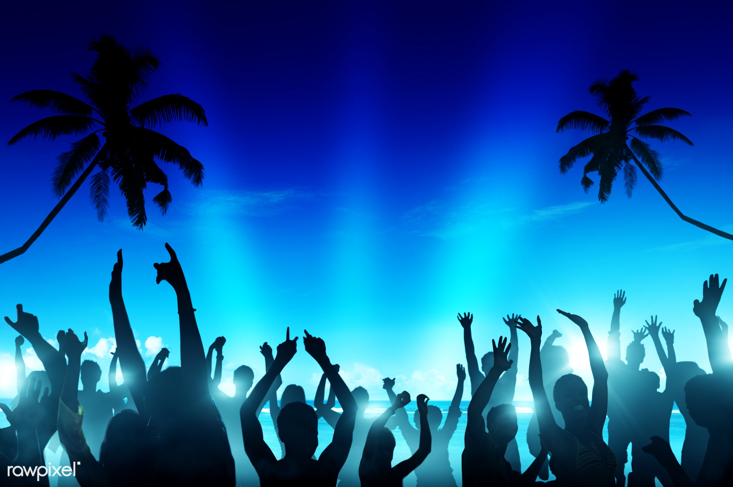 Silhouette of a summer festival - beer, nightlife, alcohol, arms outstretched, arms raised, back lit, beach, blue,...