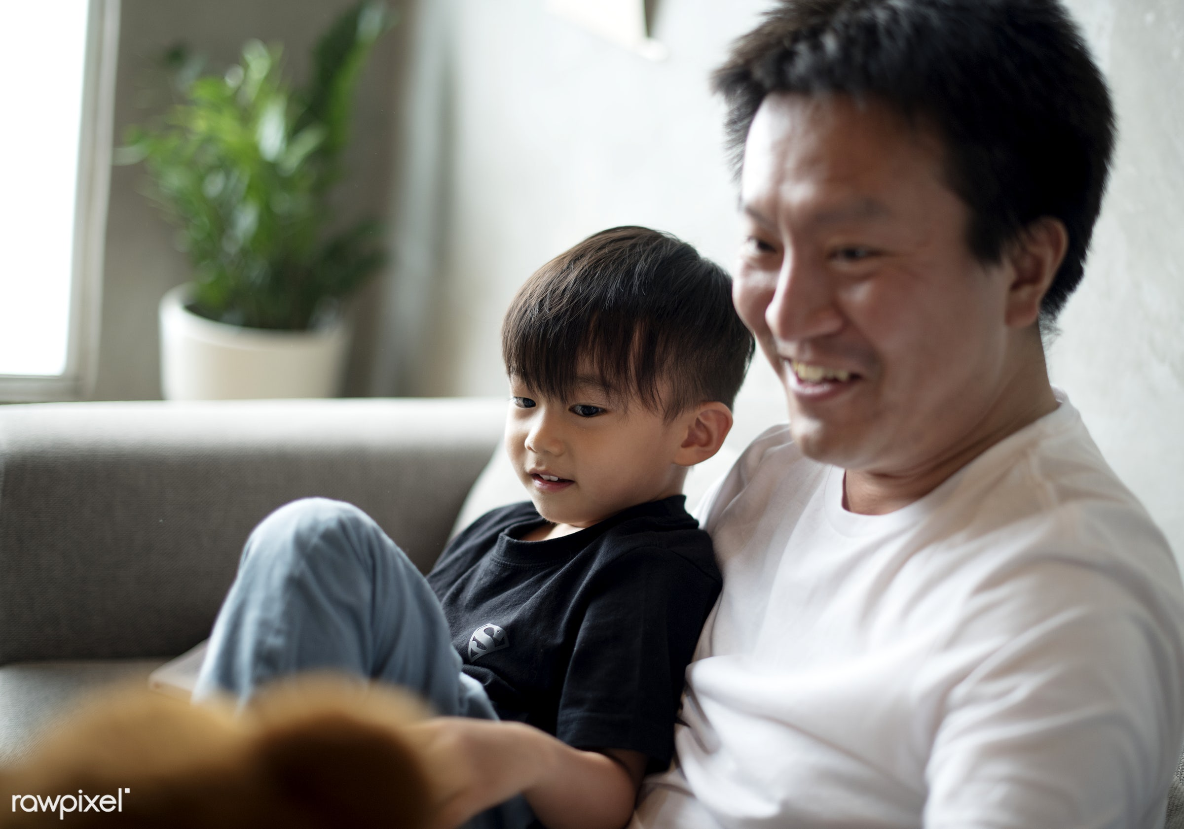 Japanese father and son - father, home, asia, asian, bonding, boy, casual, family, fatherhood, house, japan, japanese,...