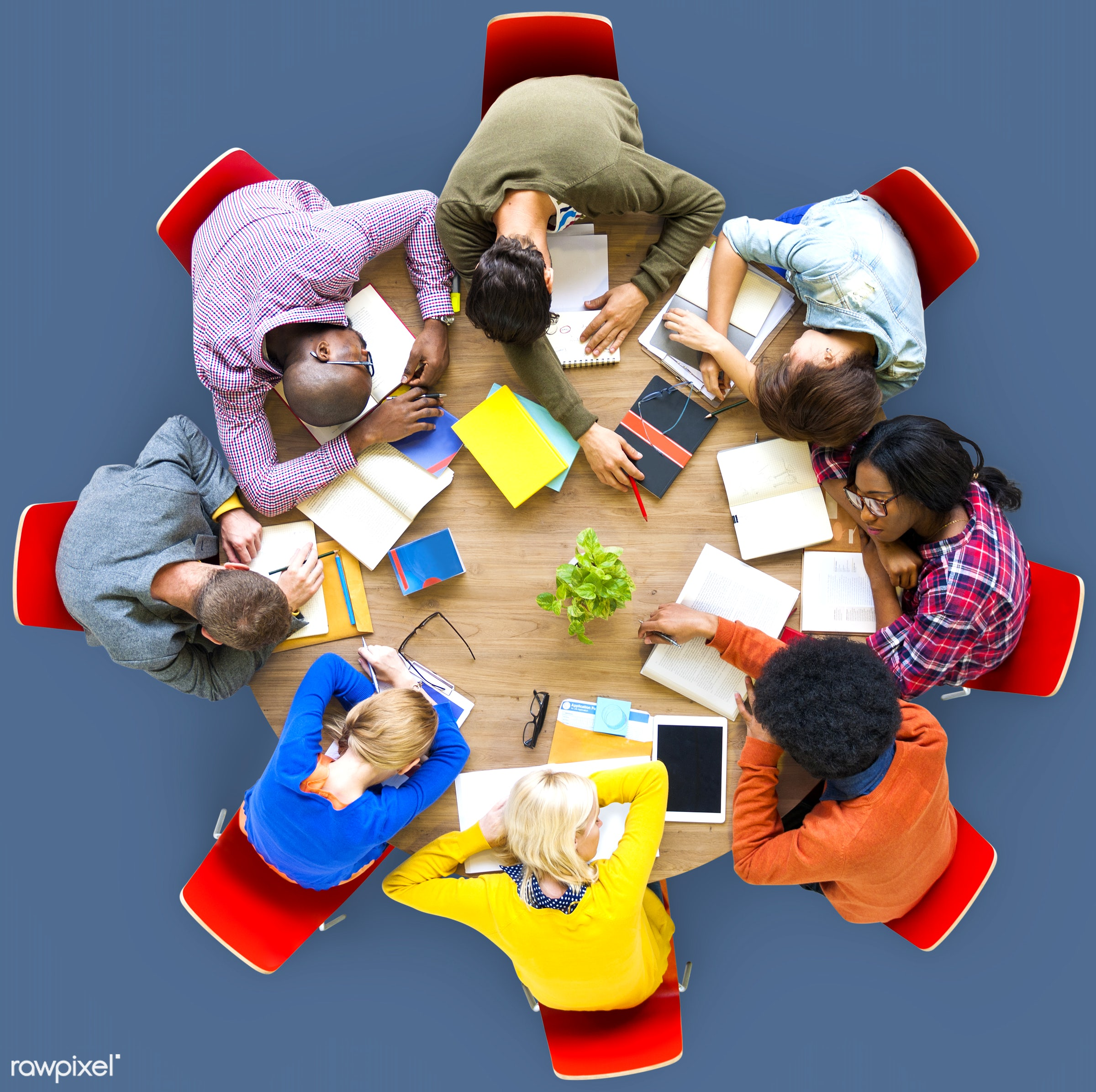 aerial view, african descent, asian ethnicity, blue, boredom, diversity, education, ethnicity, exhaustion, friends,...