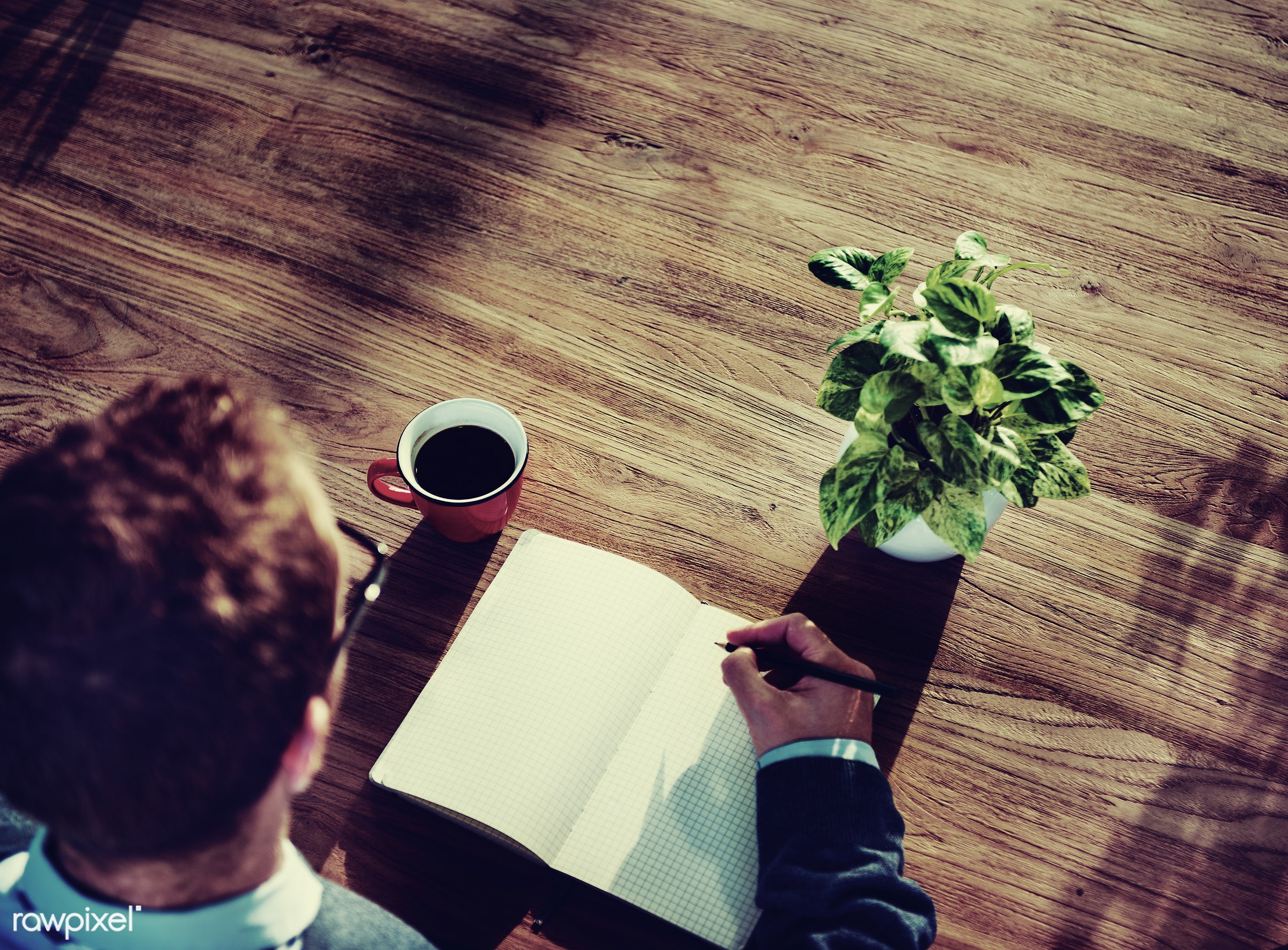 plant, cup, copy space, writing, leaves, businessman, empty, working, aerial view, man, notepad, blank, coffee, houseplant,...