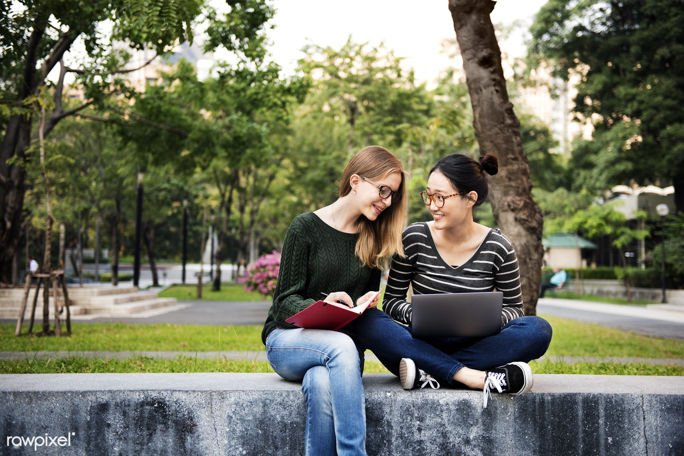analysing, analysis, bonding, book, brainstorming, campus, casual, college, communication, conversation, cooperation,...