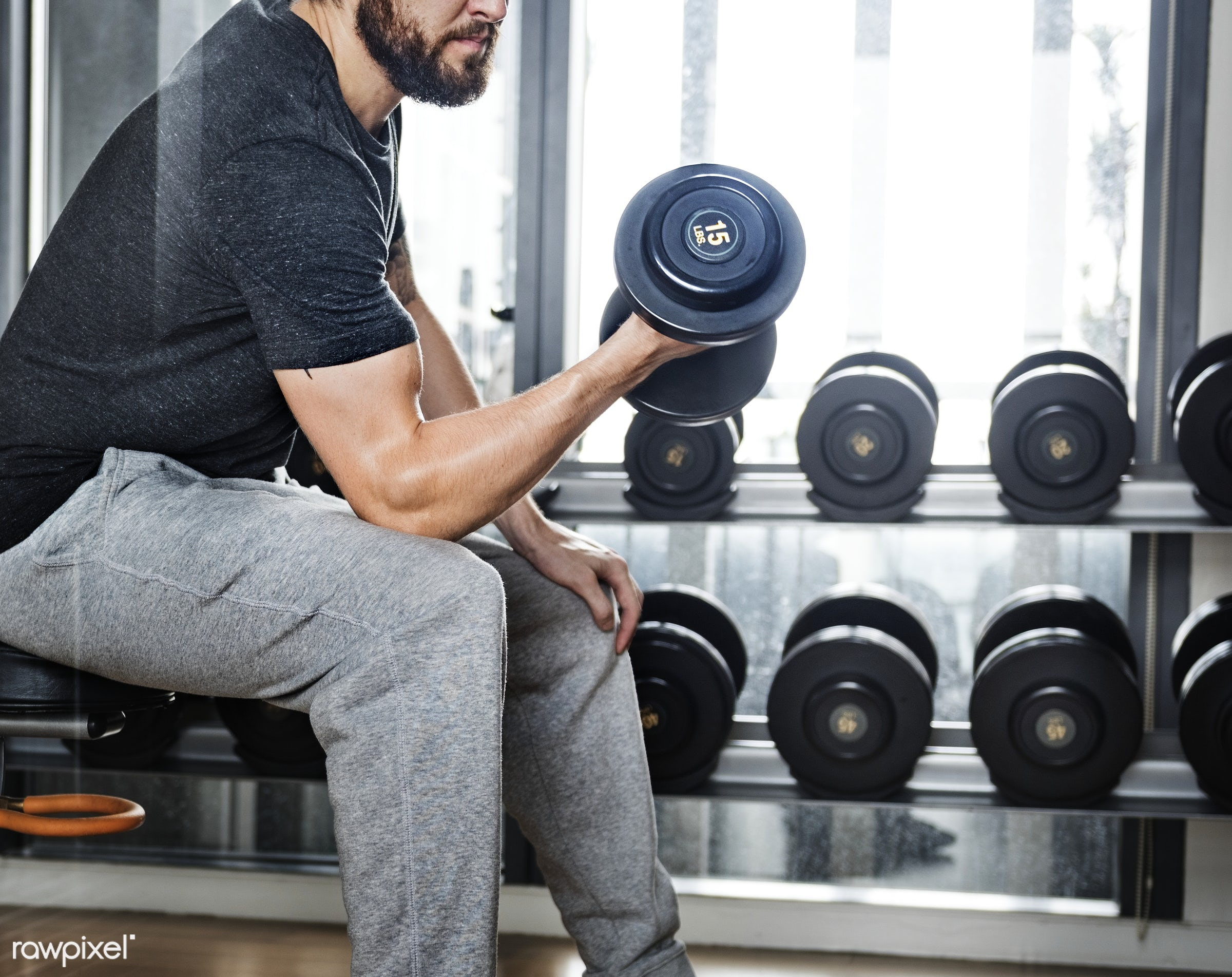 gym, sport, active, adult, athlete, athletic, attractive, barbell, body, bodybuilding, building, dumbbell, equipment,...