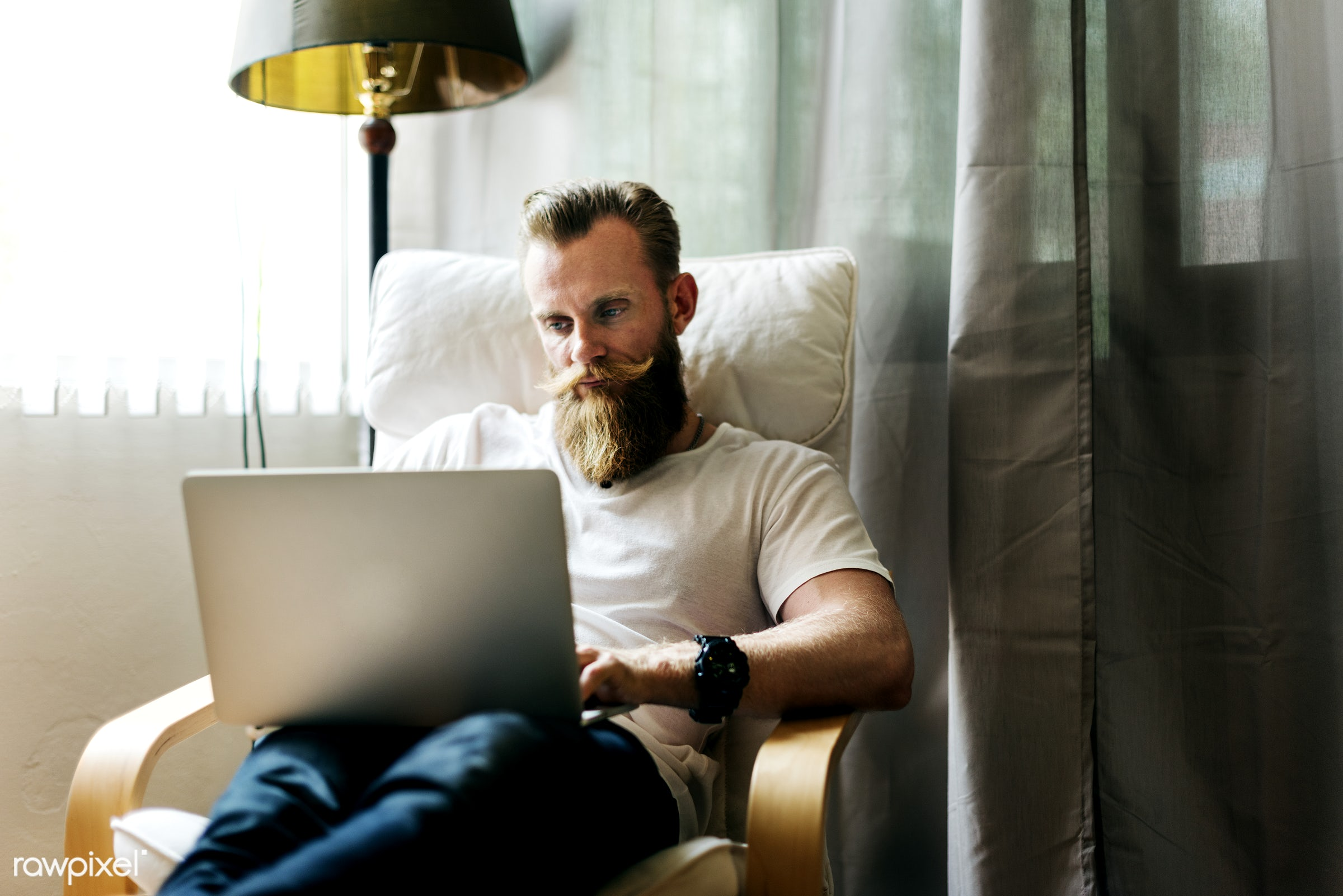 Man working from home - beard, room, male, at home, laptop, free, communication, watching, adult, armchair, browsing,...