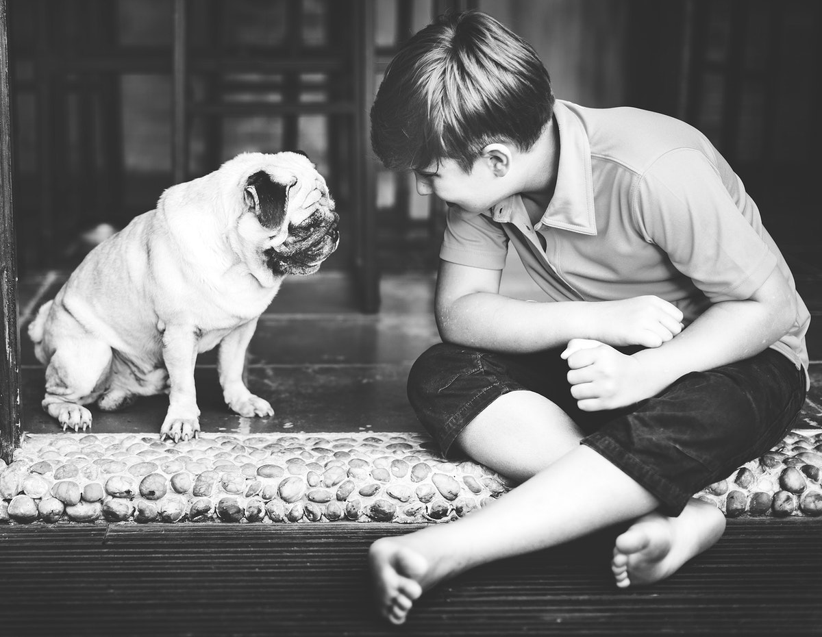 Young caucasian boy sitting with pug dog
