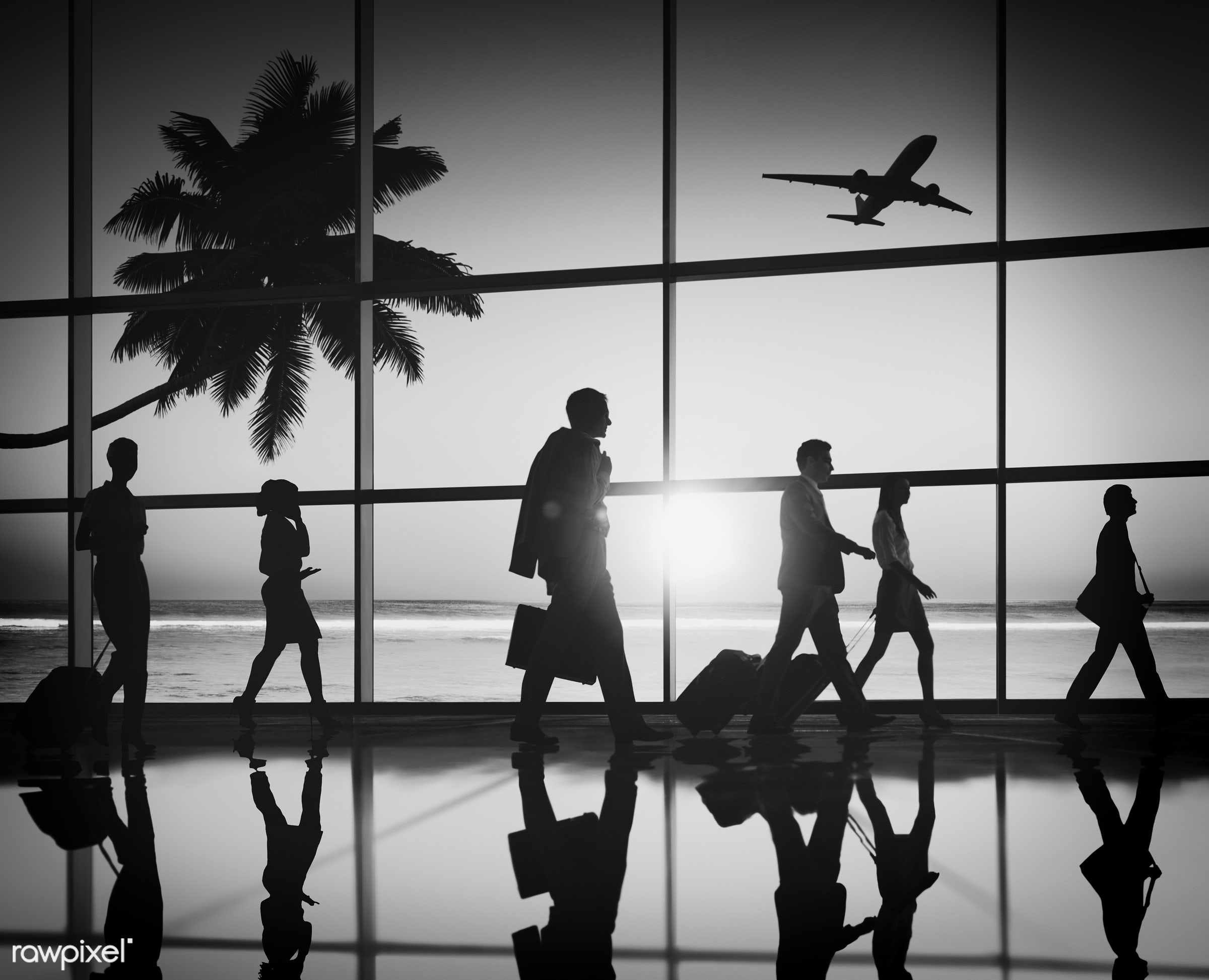3d, airline, airplane, airport, back lit, beach, business people, business travel, businessmen, businesswomen, departure,...