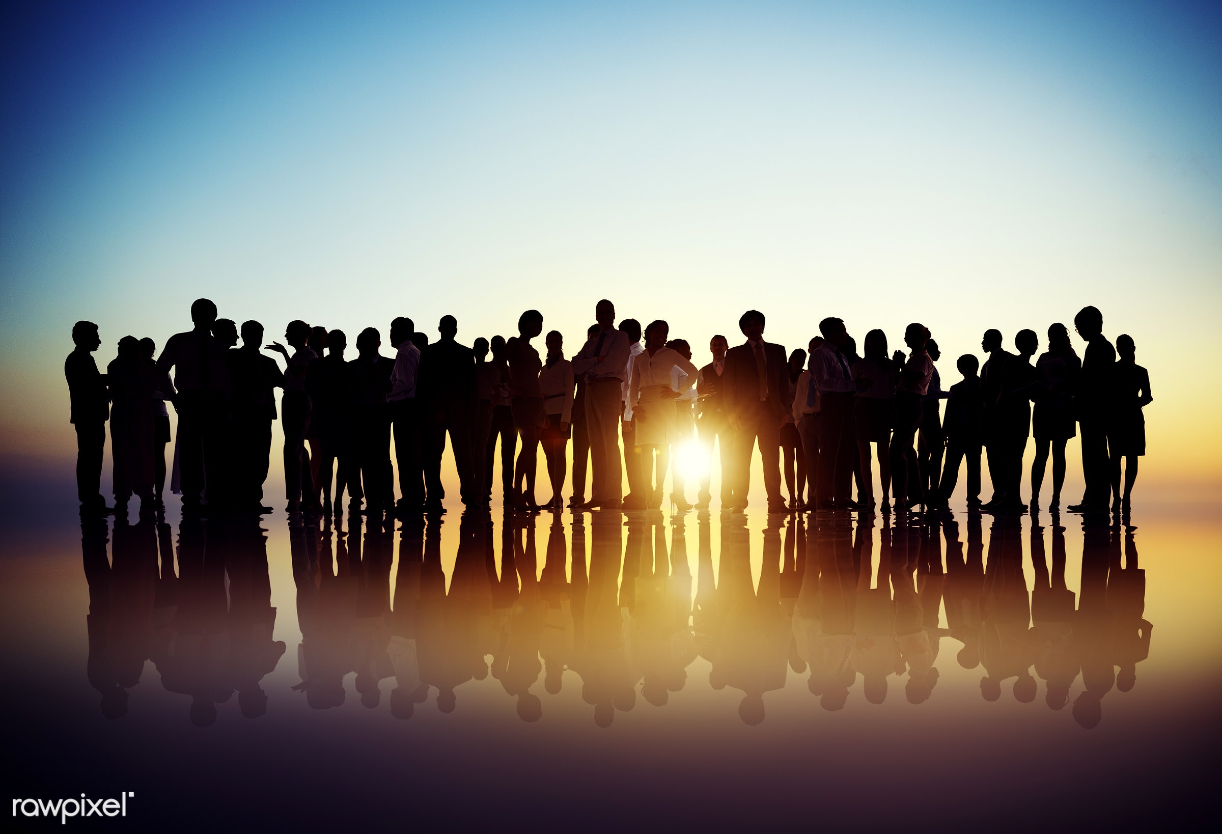advice, agreement, back lit, brainstorming, business, business people, businessmen, businesswomen, collaboration, colleague...