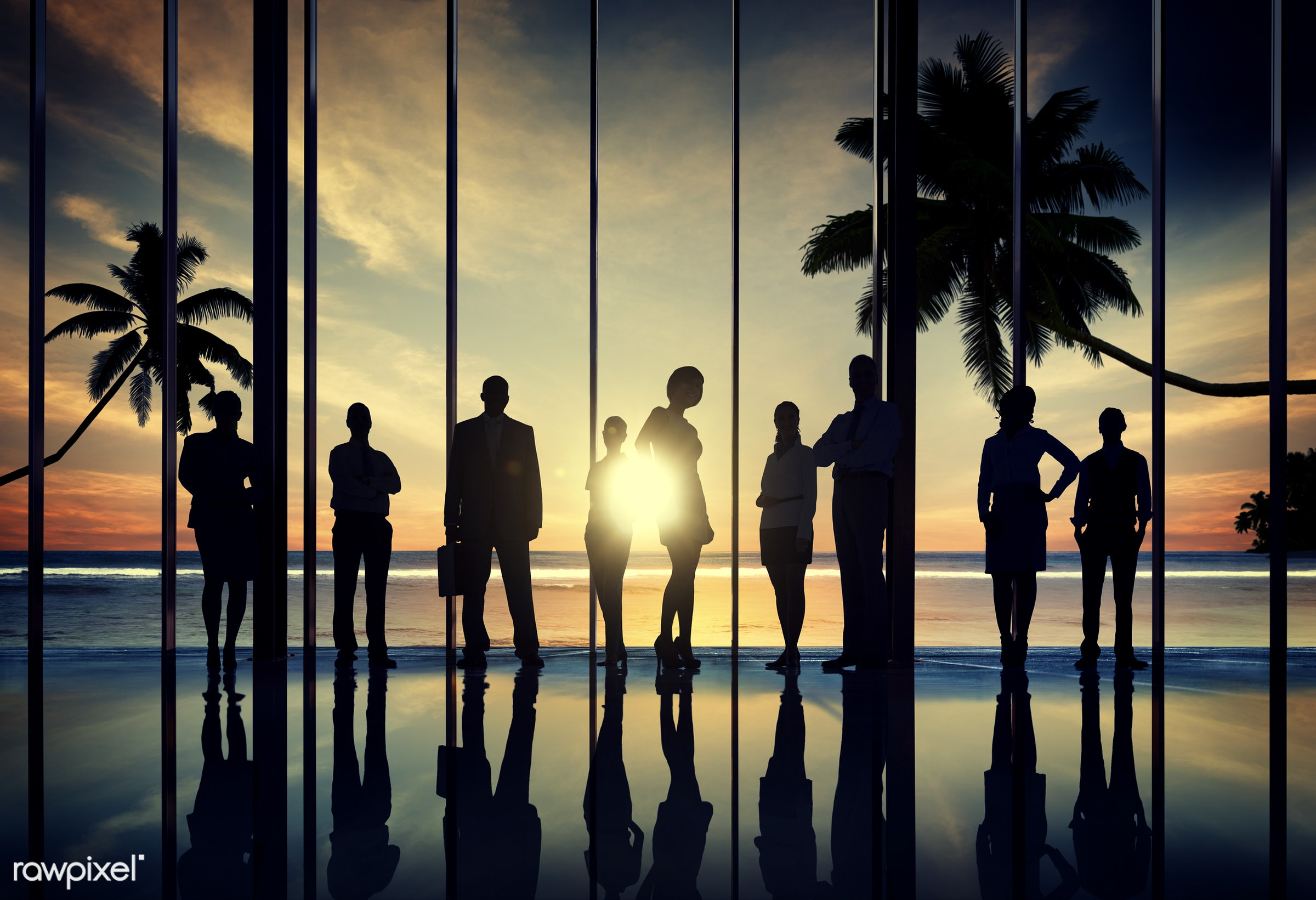 back lit, beach, building interior, business, business people, business person, businessmen, businesswomen, coconut palm...