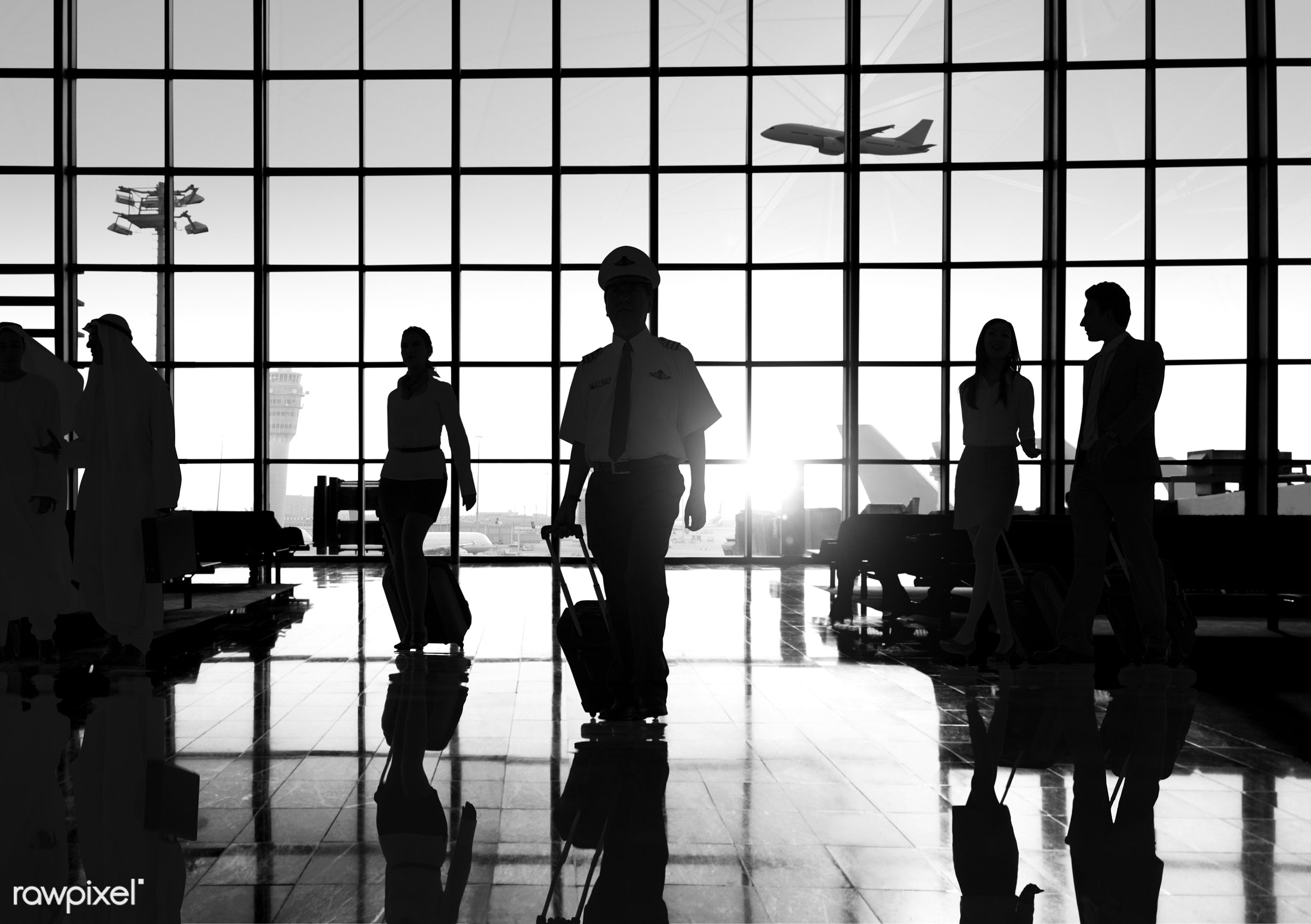 airplane, airport, arrival, back lit, business, businessmen, businesswomen, chatting, colleagues, communication, connection...