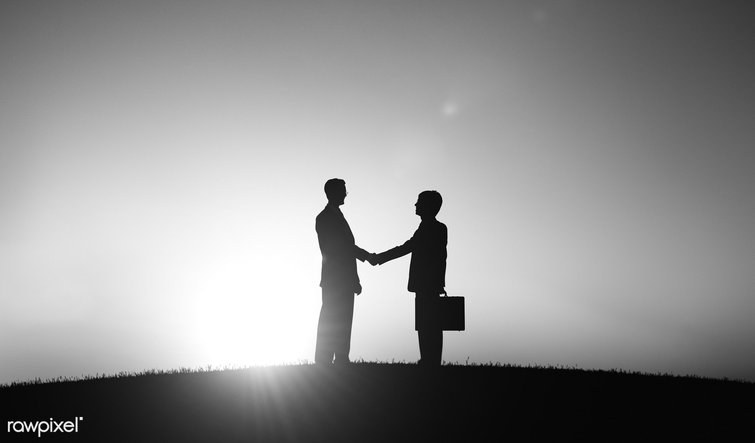 agreement, back lit, business, businessmen, career, collaboration, colleagues, corporate, crowd, deal, employees, grass,...