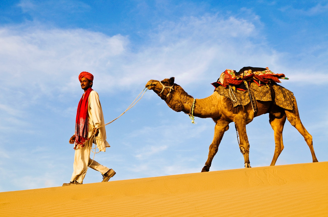 Man with a camel in the Thar desert | Royalty free photo - 81297
