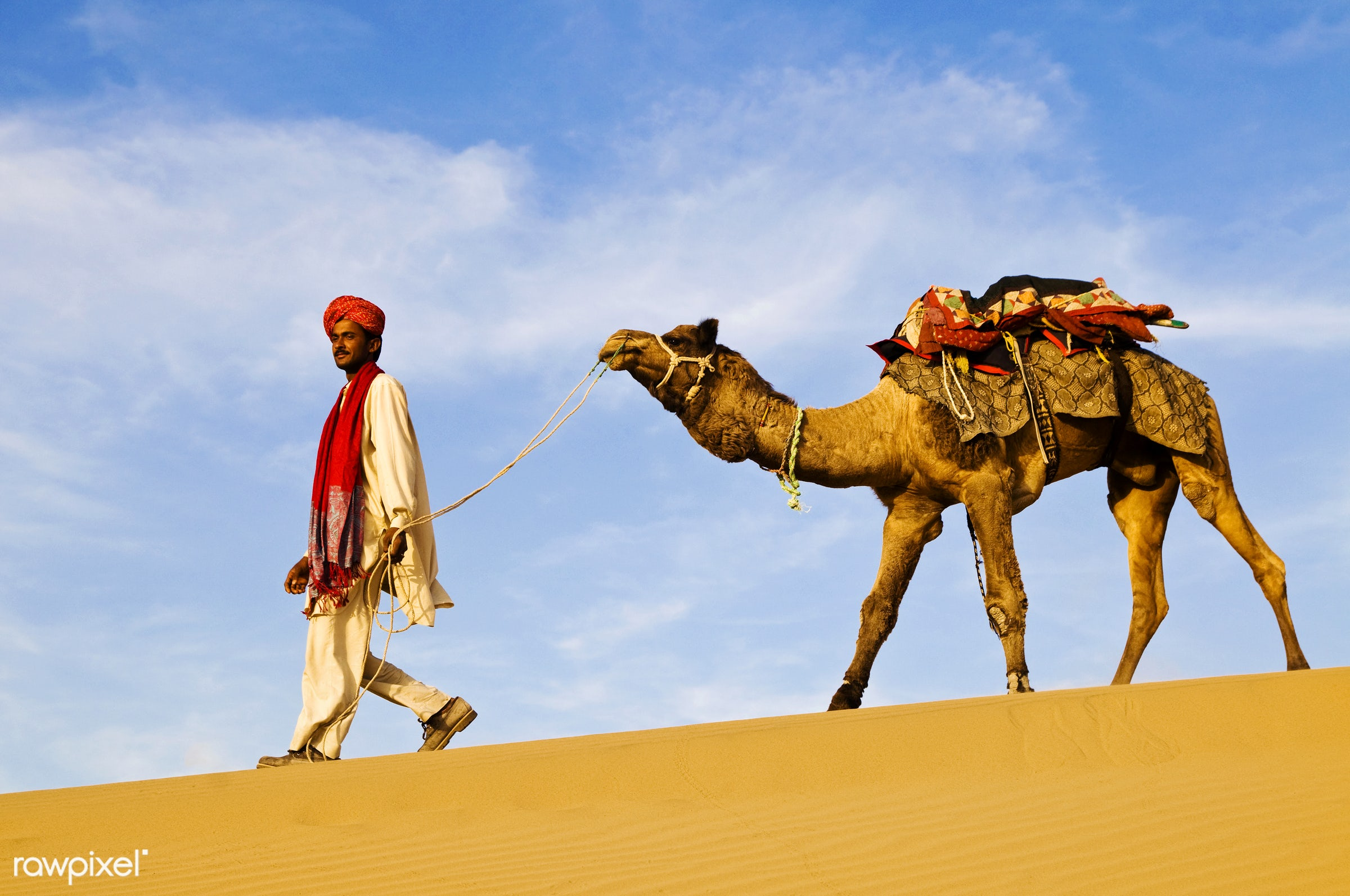 Indian man walking through the desert with his camel - animal themes, asia, beauty in nature, camel, desert, domesticated...