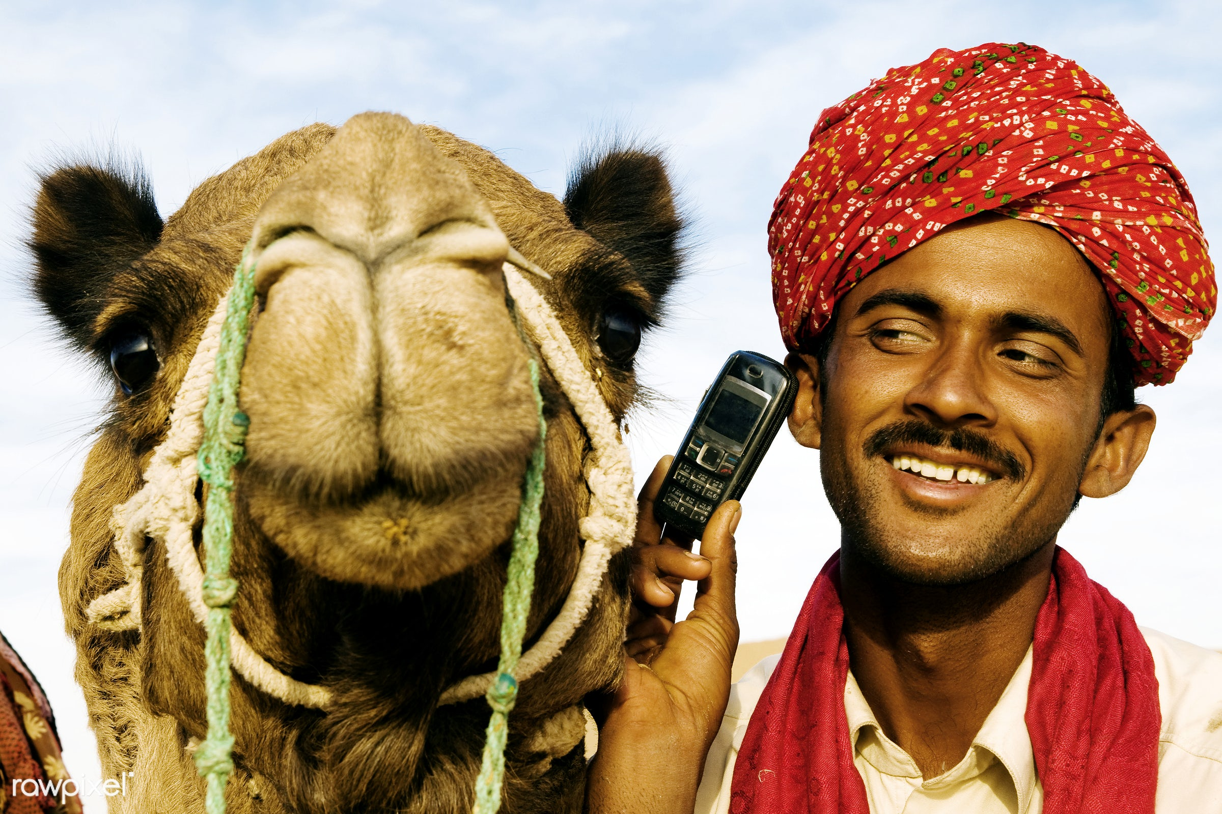 Indian man and camel on the phone, Rajasthan, India. - adult, asia, asian, business, camel, cell phone, communication, copy...