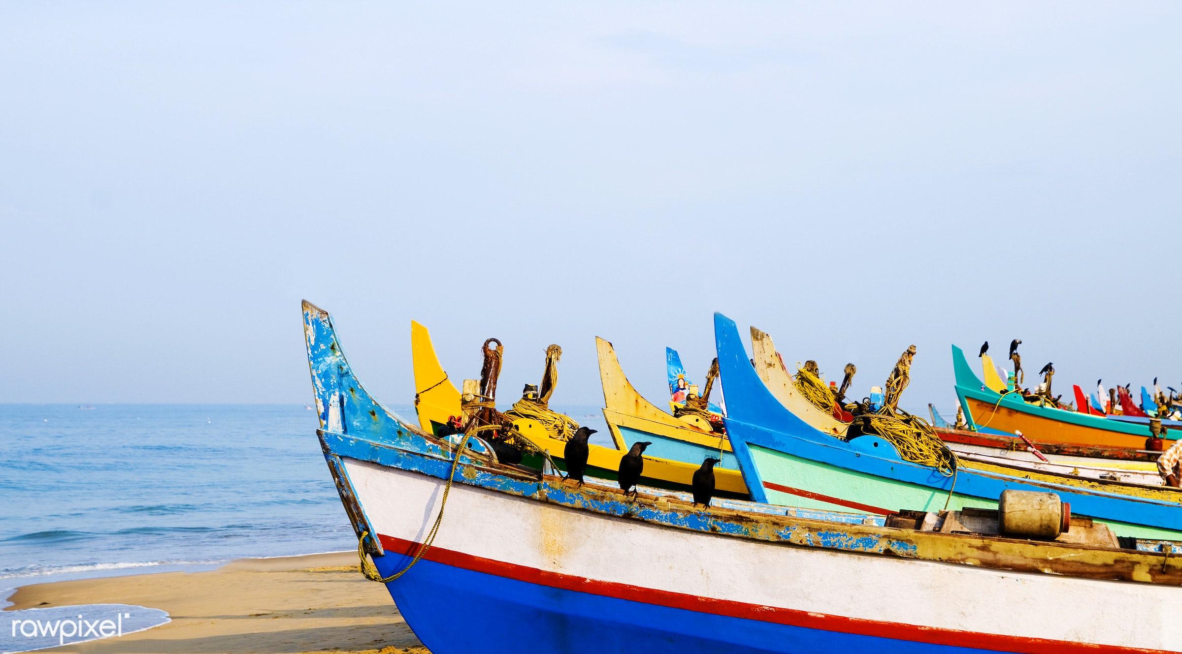 Colourful fishing boats, Kerala, India - aquatic, asia, beach, birds, blue, blue sky, break, coastline, copy space,...