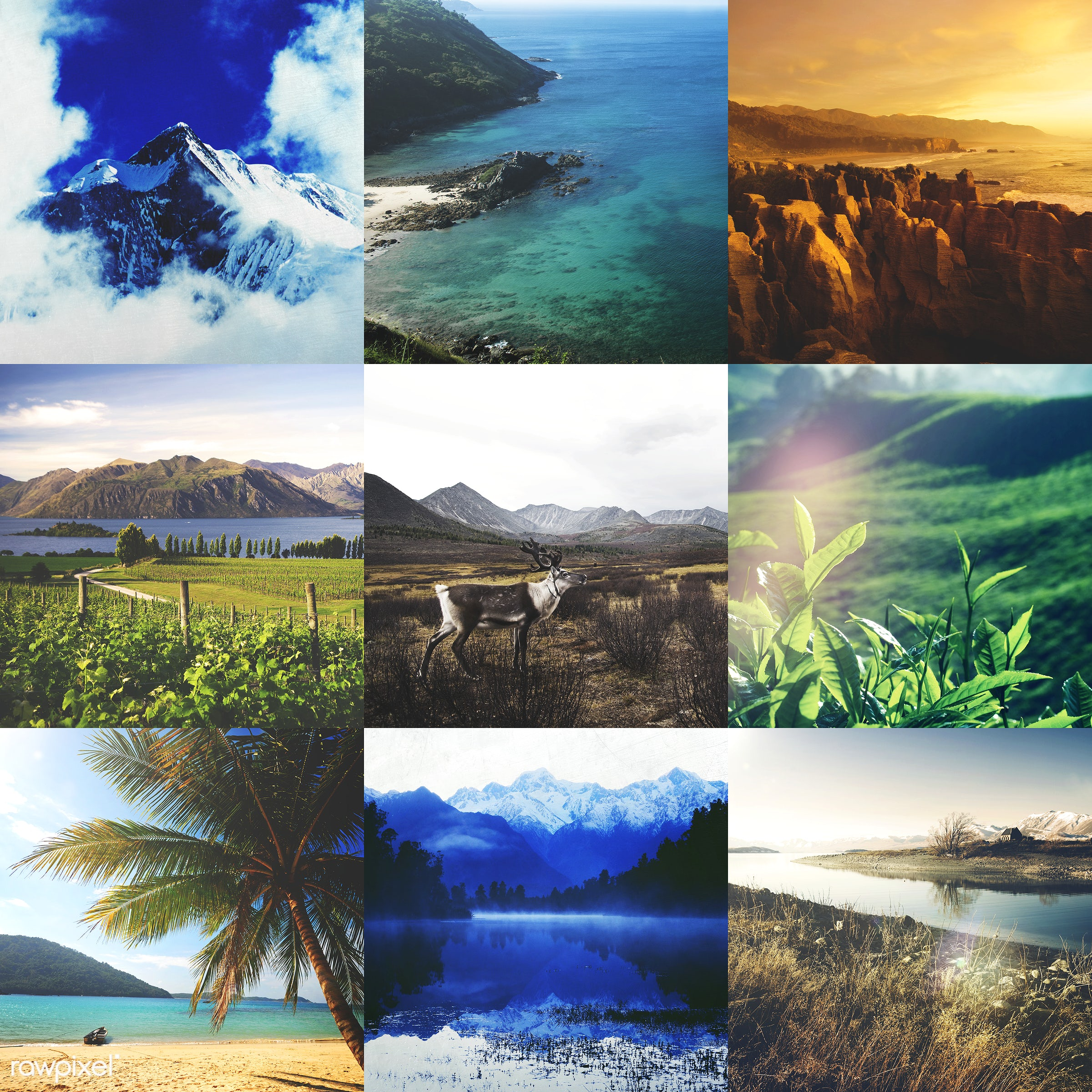 Collection of travel destinations - countryside, agriculture, autumn, beach, beautiful, beauty, beauty in nature, blue sky,...