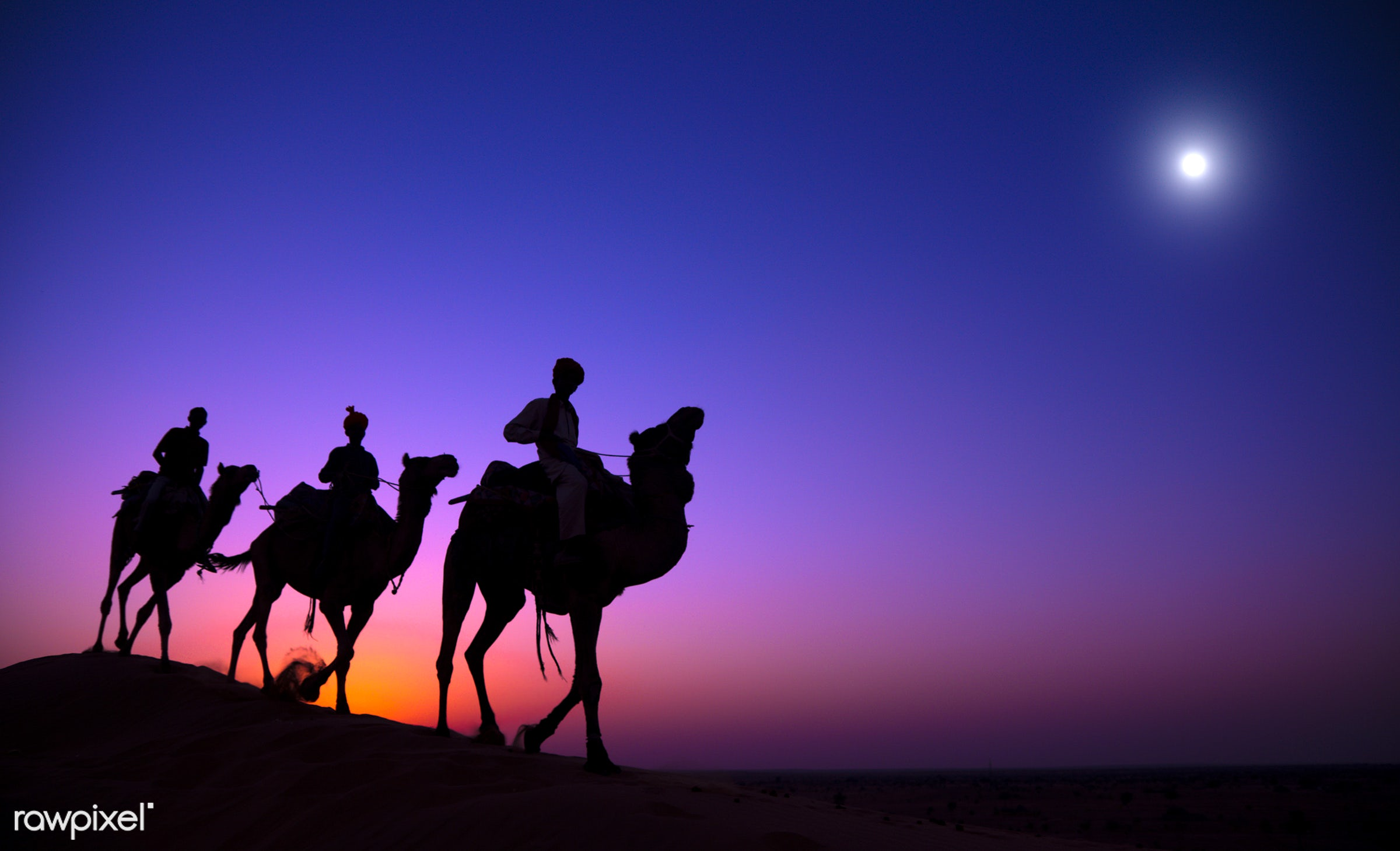 The three wise men - moon, purple, 3 kings, animal themes, asia, blue, camel, culture, desert, dusk, evening, exoticism,...