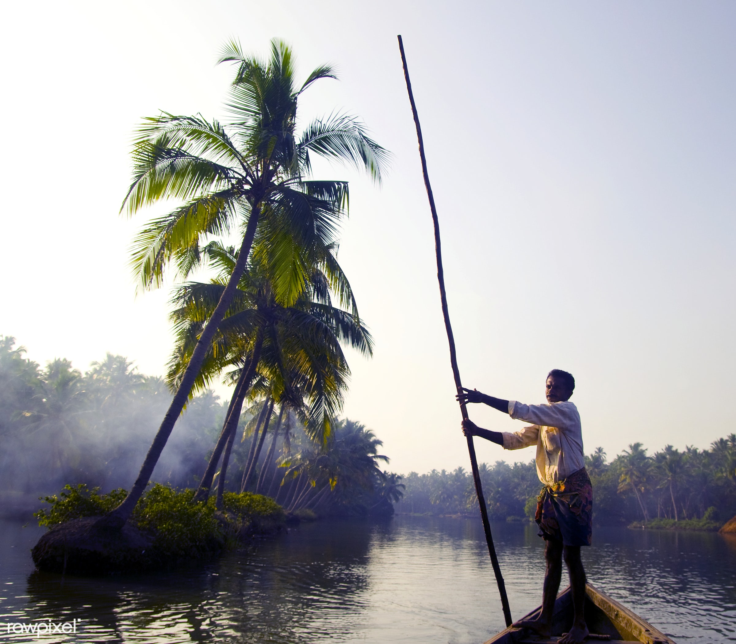 Indian boatman through the backwaters of Kerala - india, coconut palm tree, adult, aquatic, asian and indian ethnicities,...