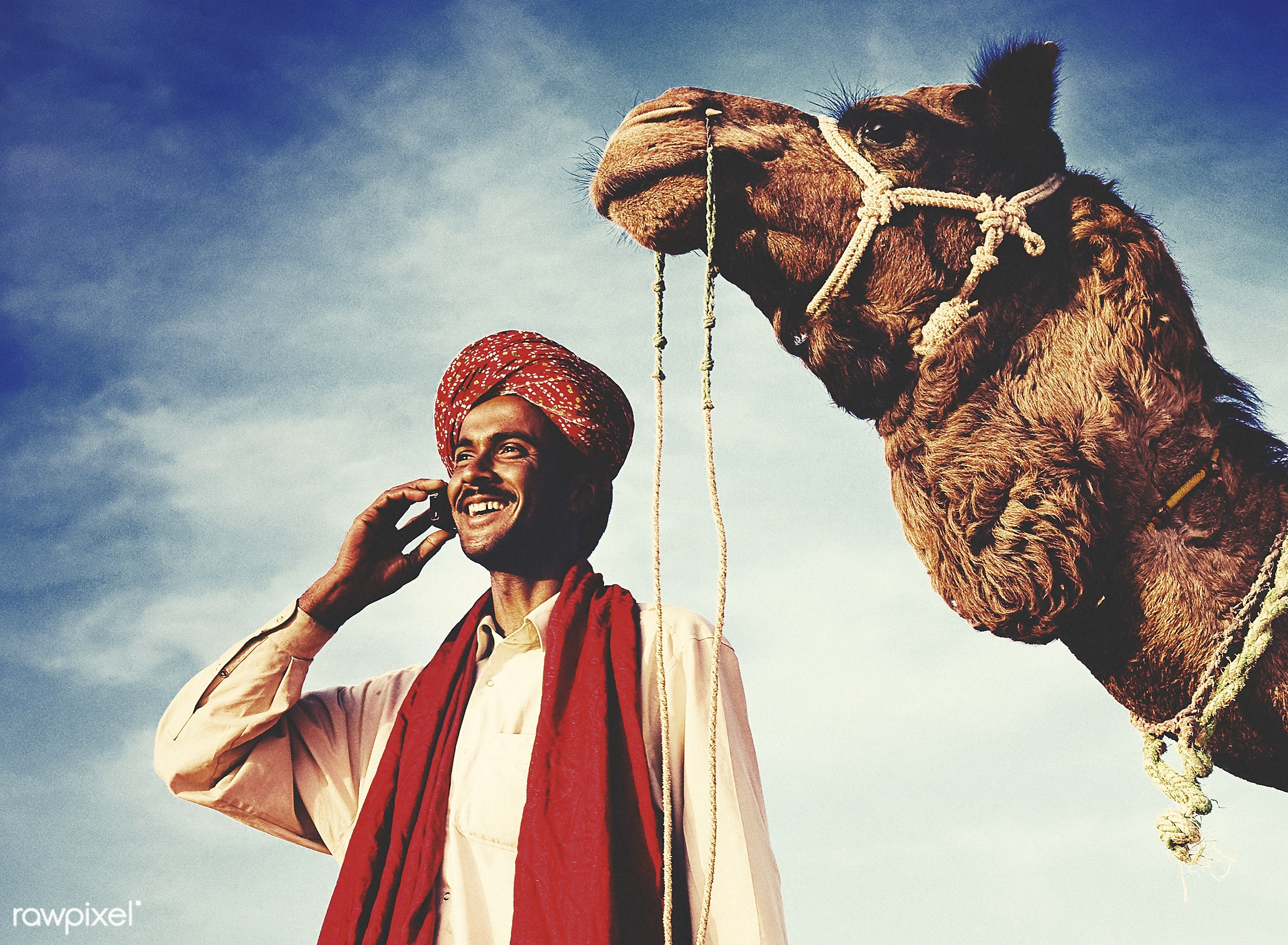 Indian man with a camel talking on the phone - exotic, adult, asian, away, business, businessman, camel, cheerful, climate,...