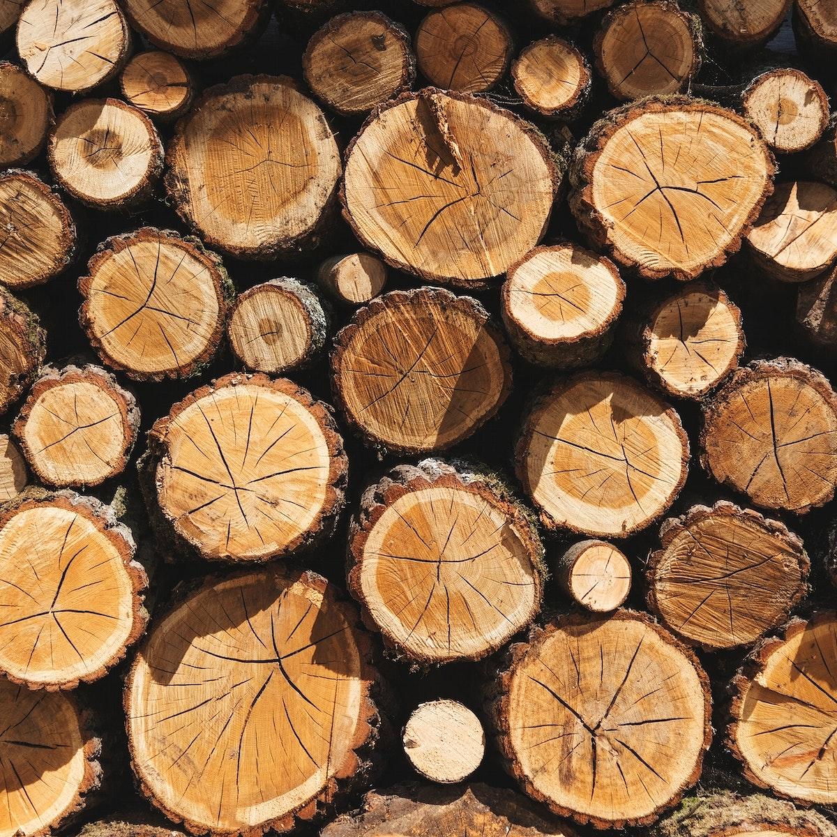 Stacks of timber