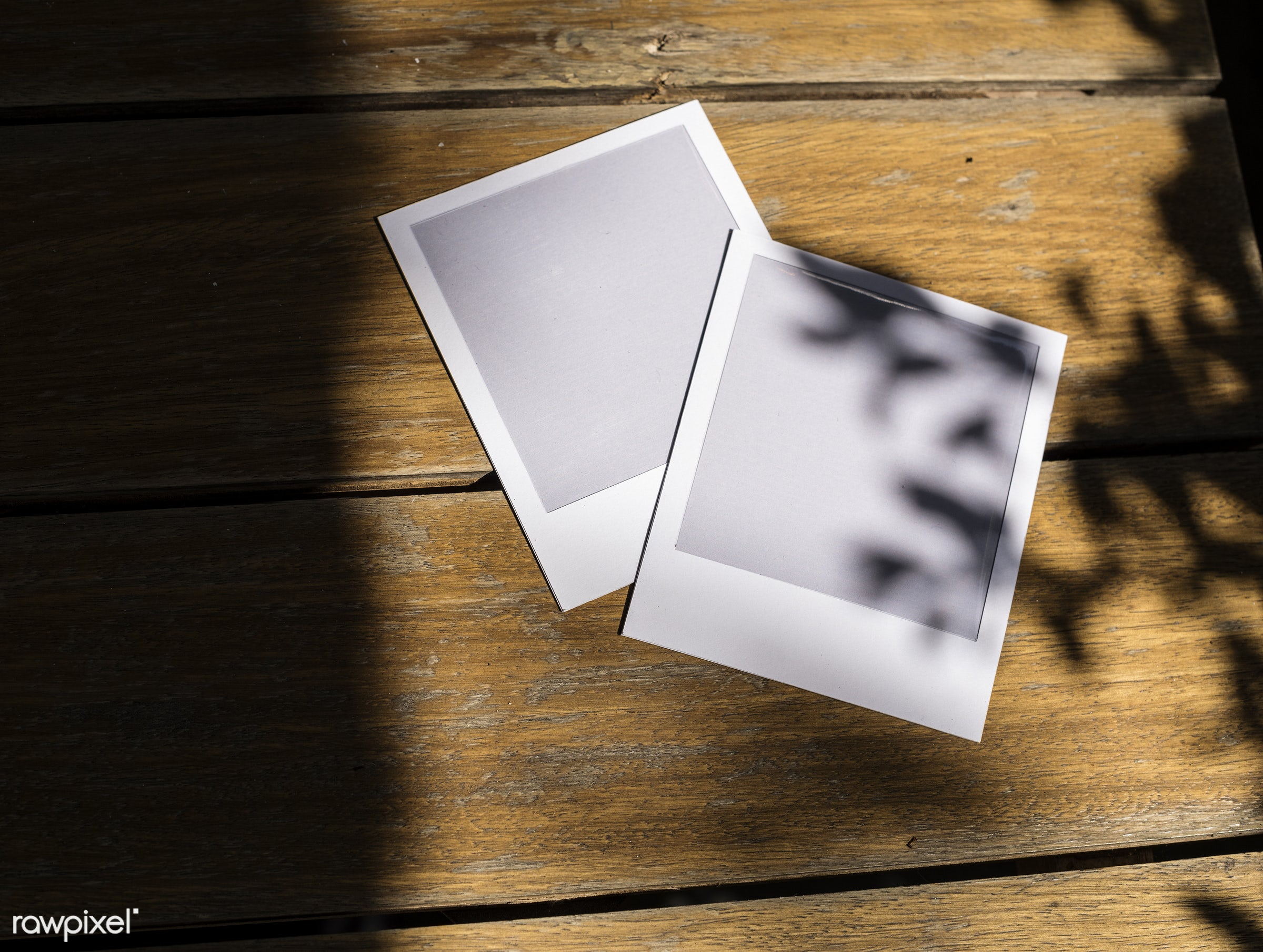 blank, border, closeup, copy space, empty, floor, frame, ground, image, instant, mock up, mockup, nobody, object, photos,...
