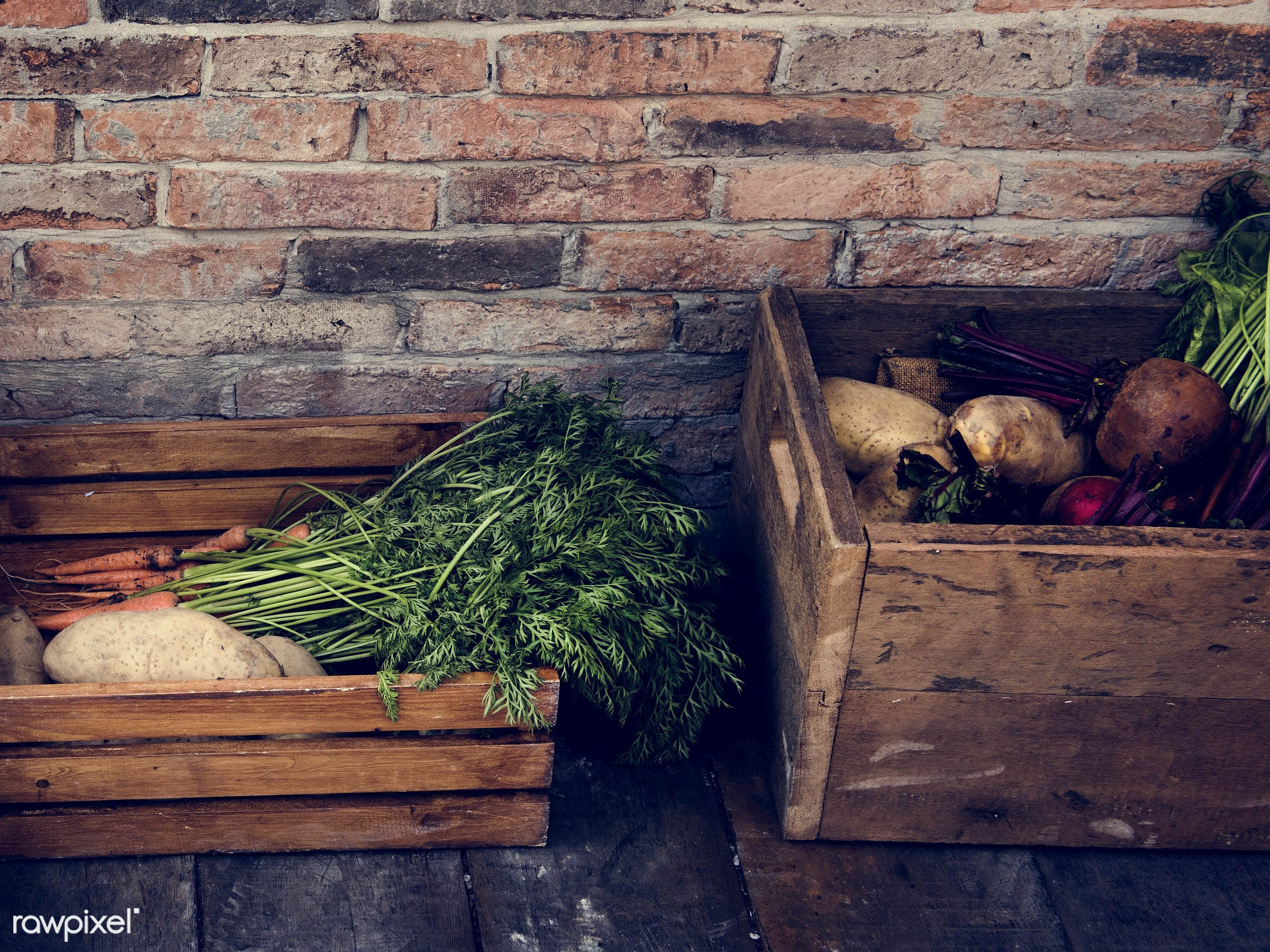 grocery, shop, store, nutritious, carrot, farmer, fresh, healthy eating, marketplace, agriculture, healthy lifestyle,...