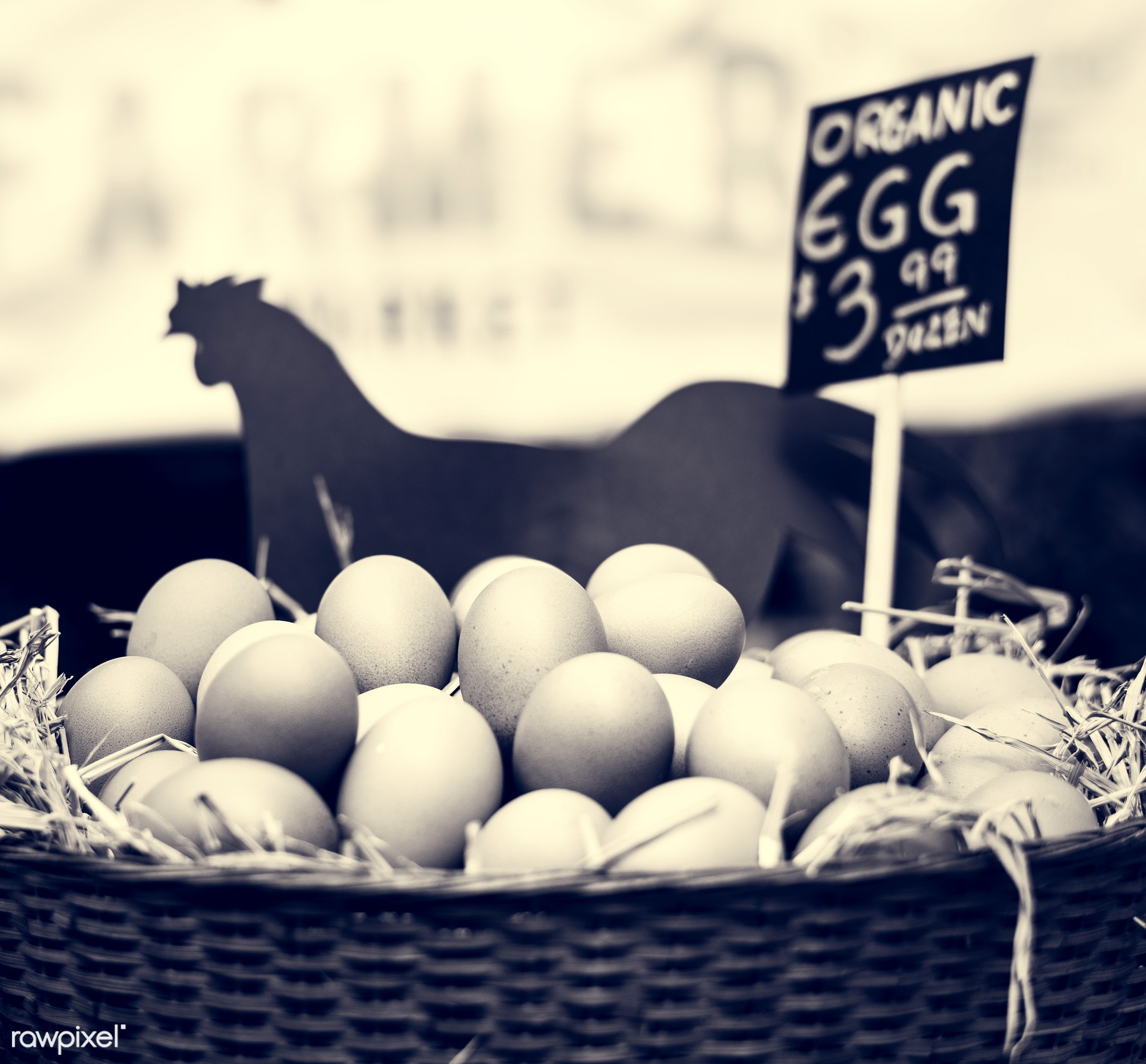 shop, uncooked, cuisine, poultry, round, rooster, house, homemade, farmer, protein, ingredient, oval, selling,...