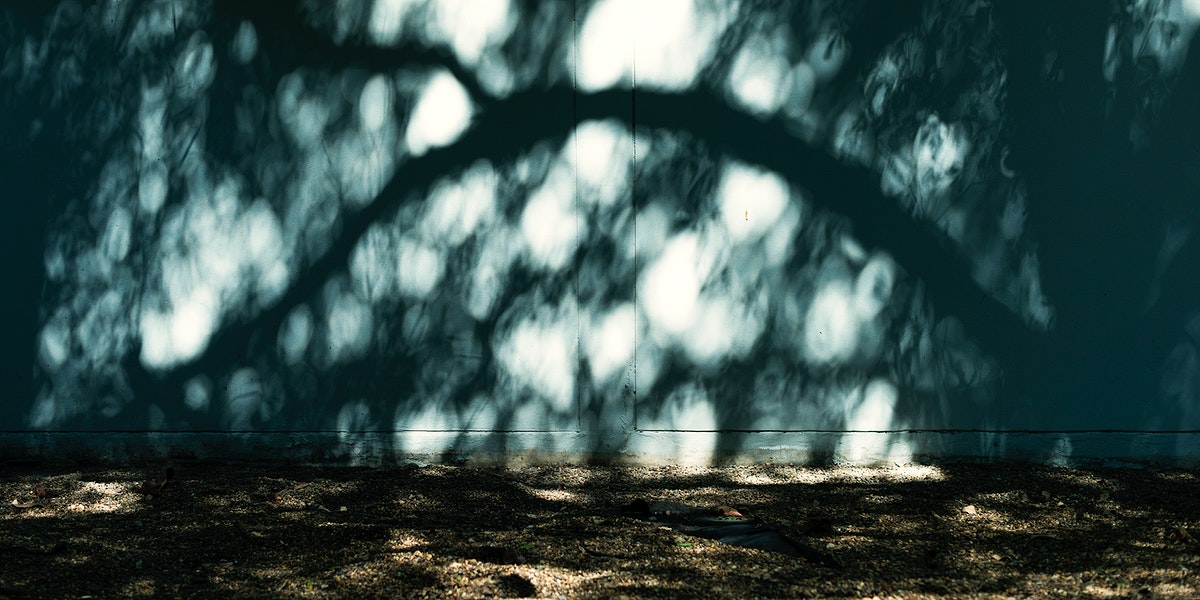 Sunlight shade on concrete wall at the park