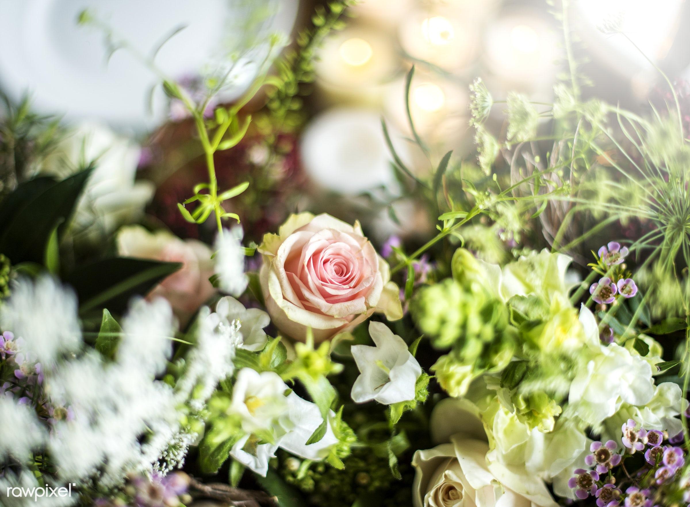 shop, nobody, festive, detail, decorative, colorful, events, plants, spring, blossom, decor, nature, fresh, attractive,...