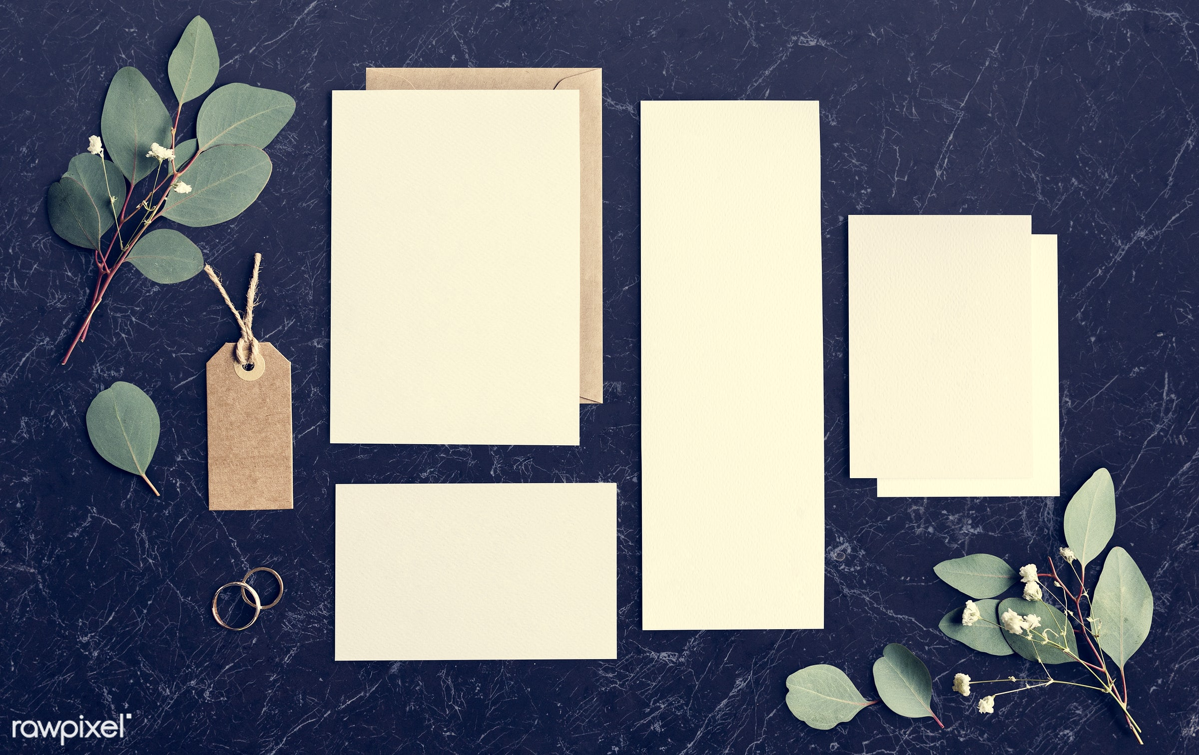 white papers, plant, nobody, marble, copy space, tag, paper, show, mockup, desk, leaves, nature, communicate, empty, card,...