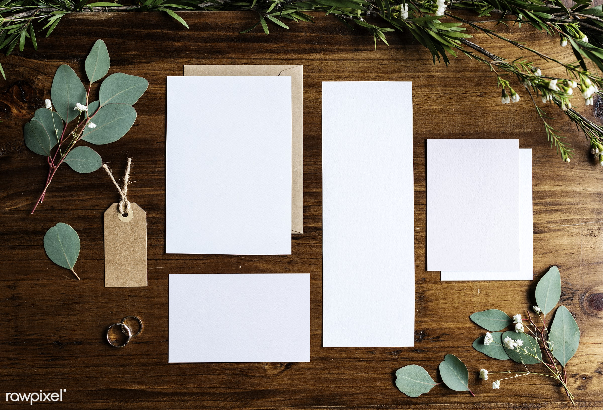 plant, white papers, nobody, copy space, paper, tag, mockup, show, desk, leaves, nature, communicate, empty, card, rings,...