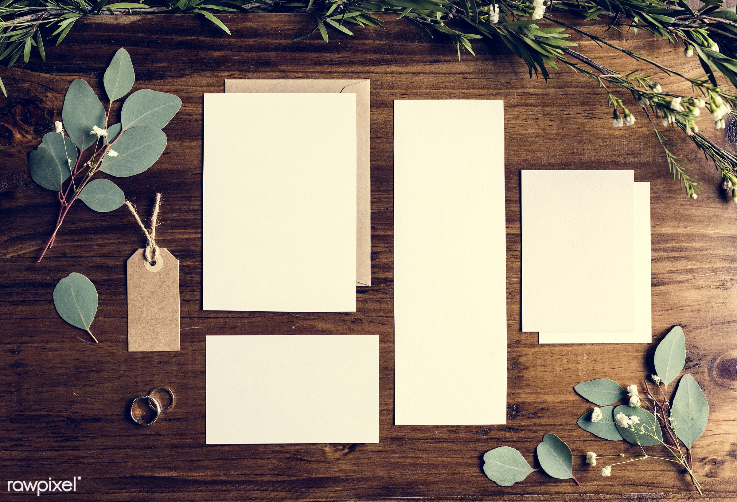 white papers, plant, nobody, copy space, tag, paper, show, mockup, desk, leaves, nature, communicate, empty, card, rings,...
