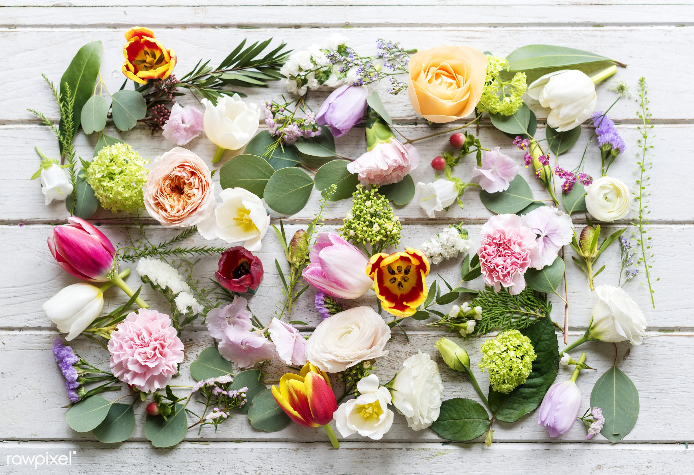 Different varieties of flowers collection - variety, flowers, real, natural, fresh, aerial, table, pattern, texture,...