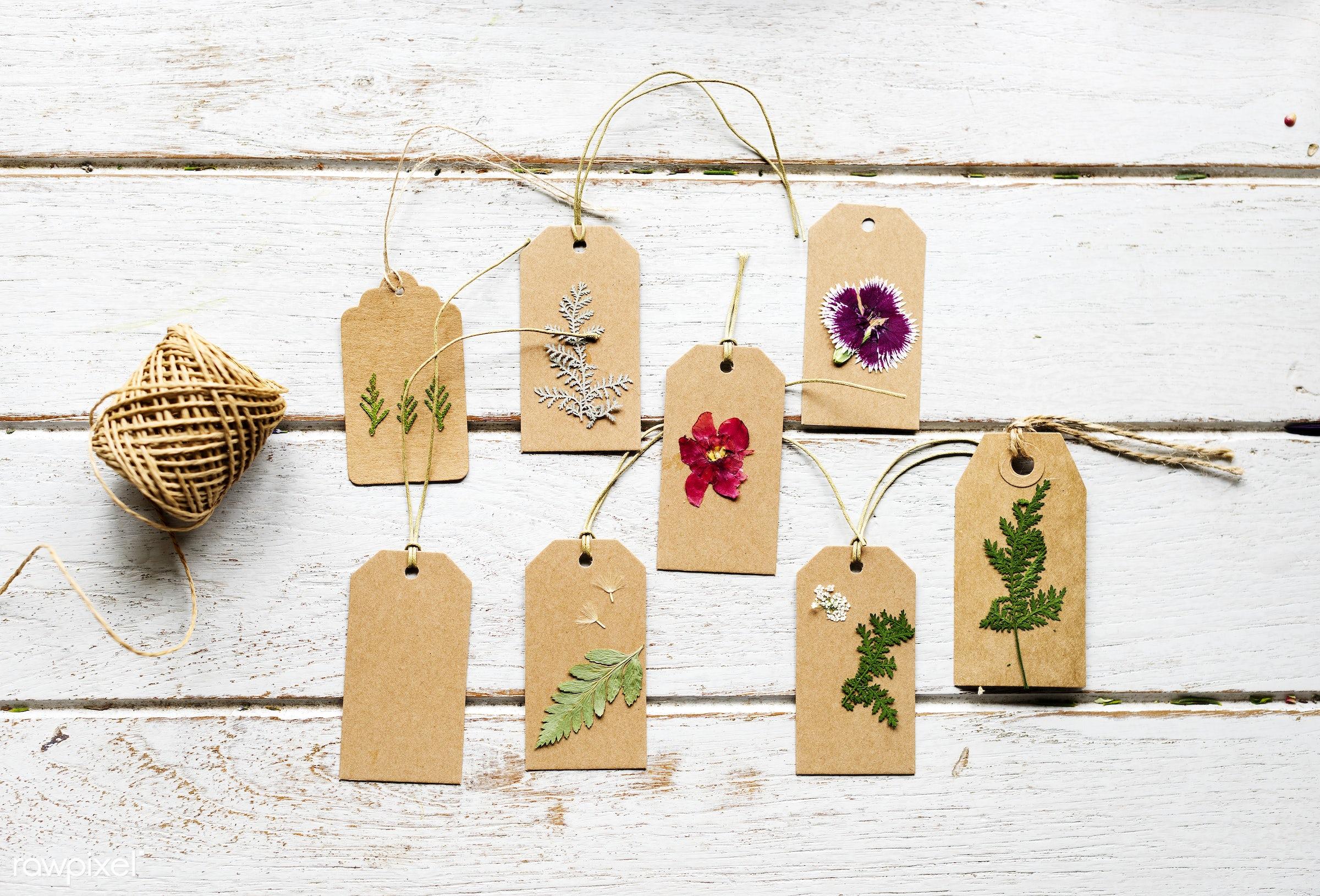 plant, bouquet, decorative, type, kind, blossom, decor, fresh, pressed flower, flowers, cheerful, flower, romance,...