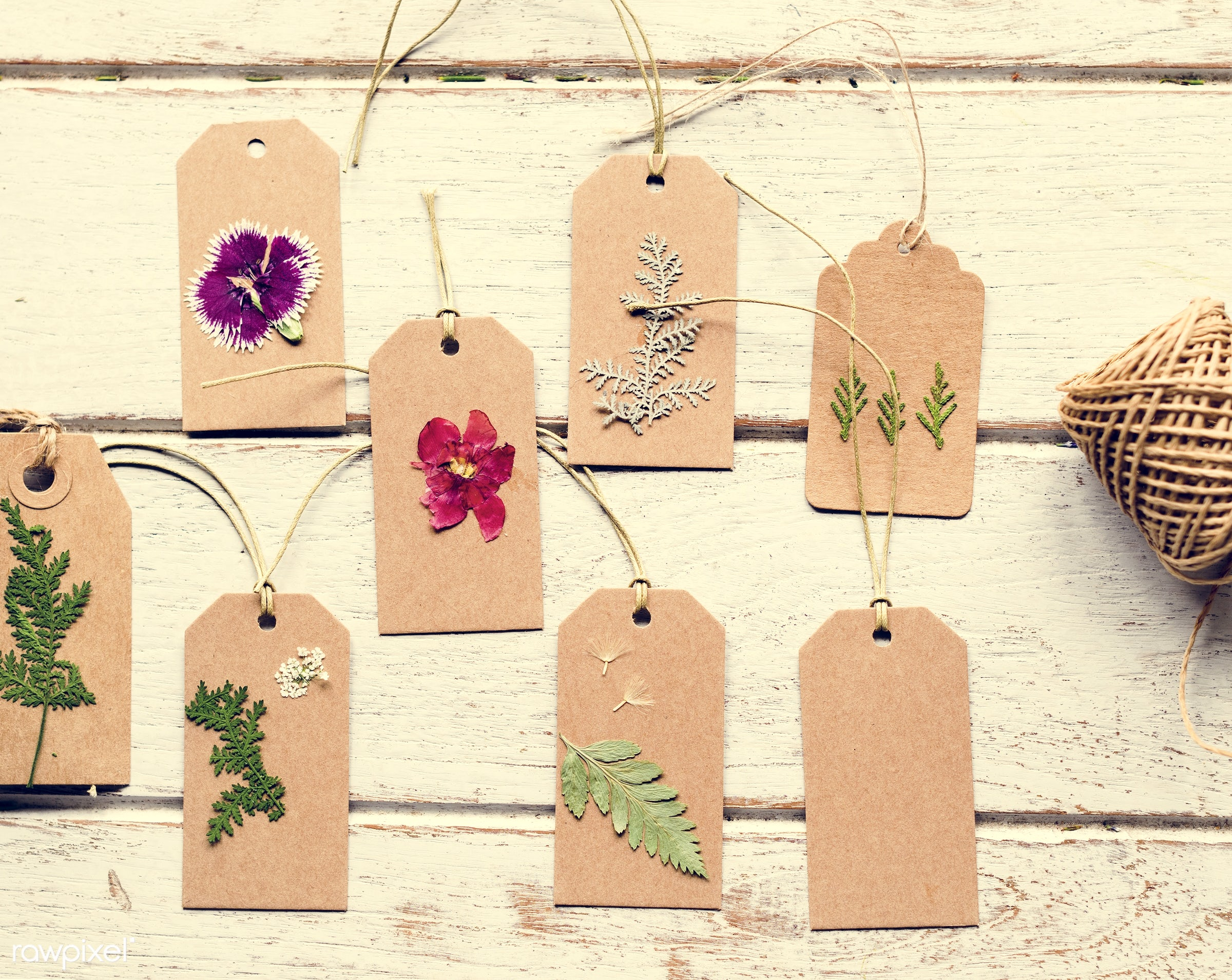 nobody, festive, detail, decorative, colorful, tag, paper, handicraft, events, made, plants, leaf, leaves, spring, blossom,...