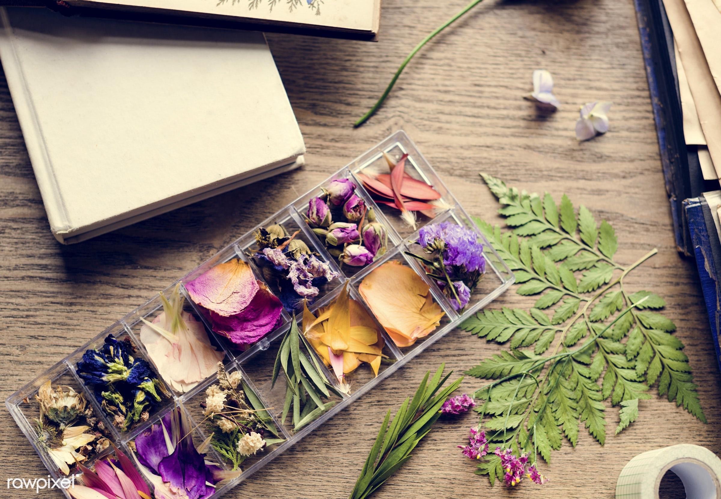 plant, bouquet, decorative, leaf, type, kind, blossom, decor, fresh, foliage, flowers, cheerful, flower, romance, decoration...