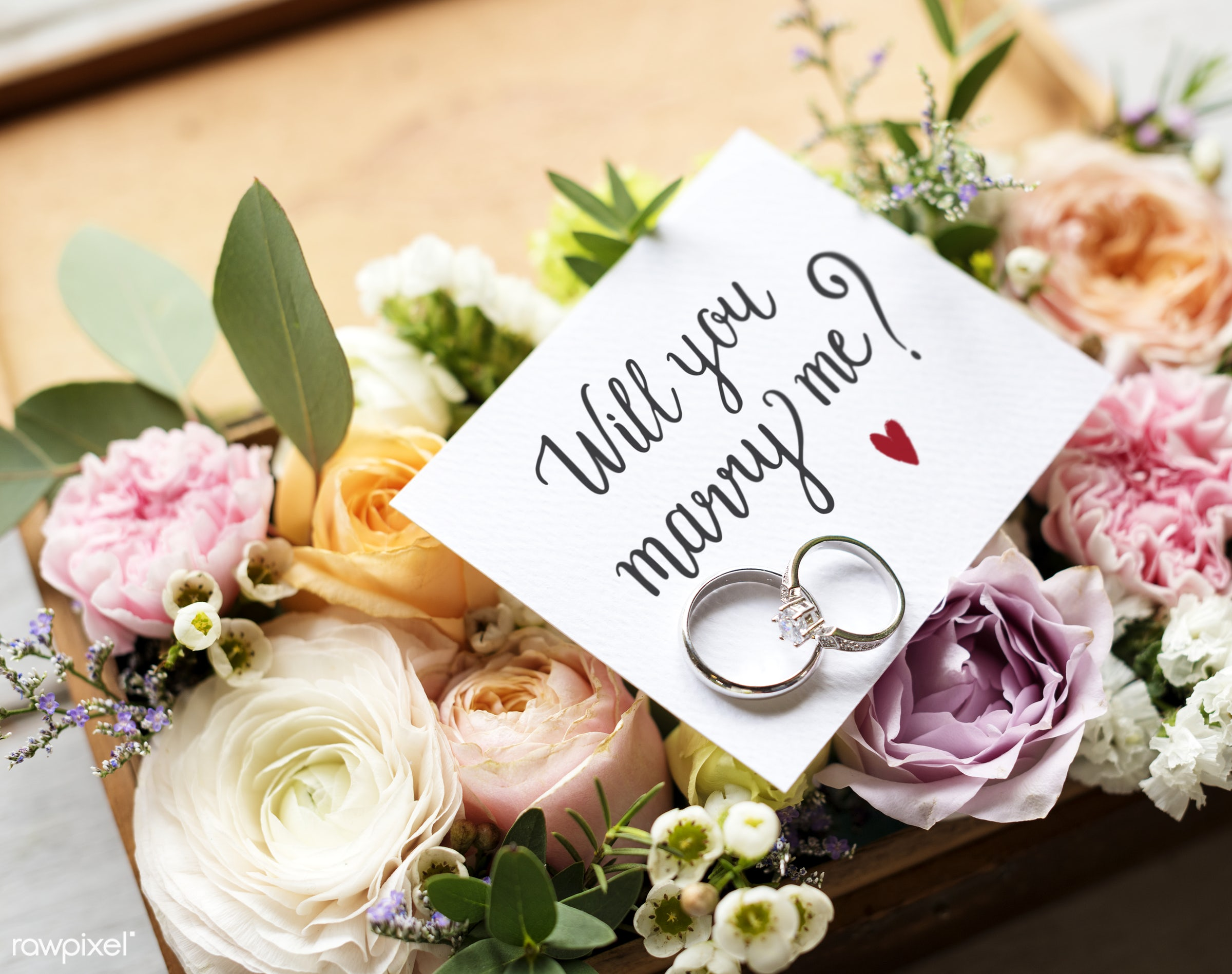 expression, nobody, bouquet, smitten, together, wax flower, love, propose, gather, bush, rings, flowers, cheerful, marry,...