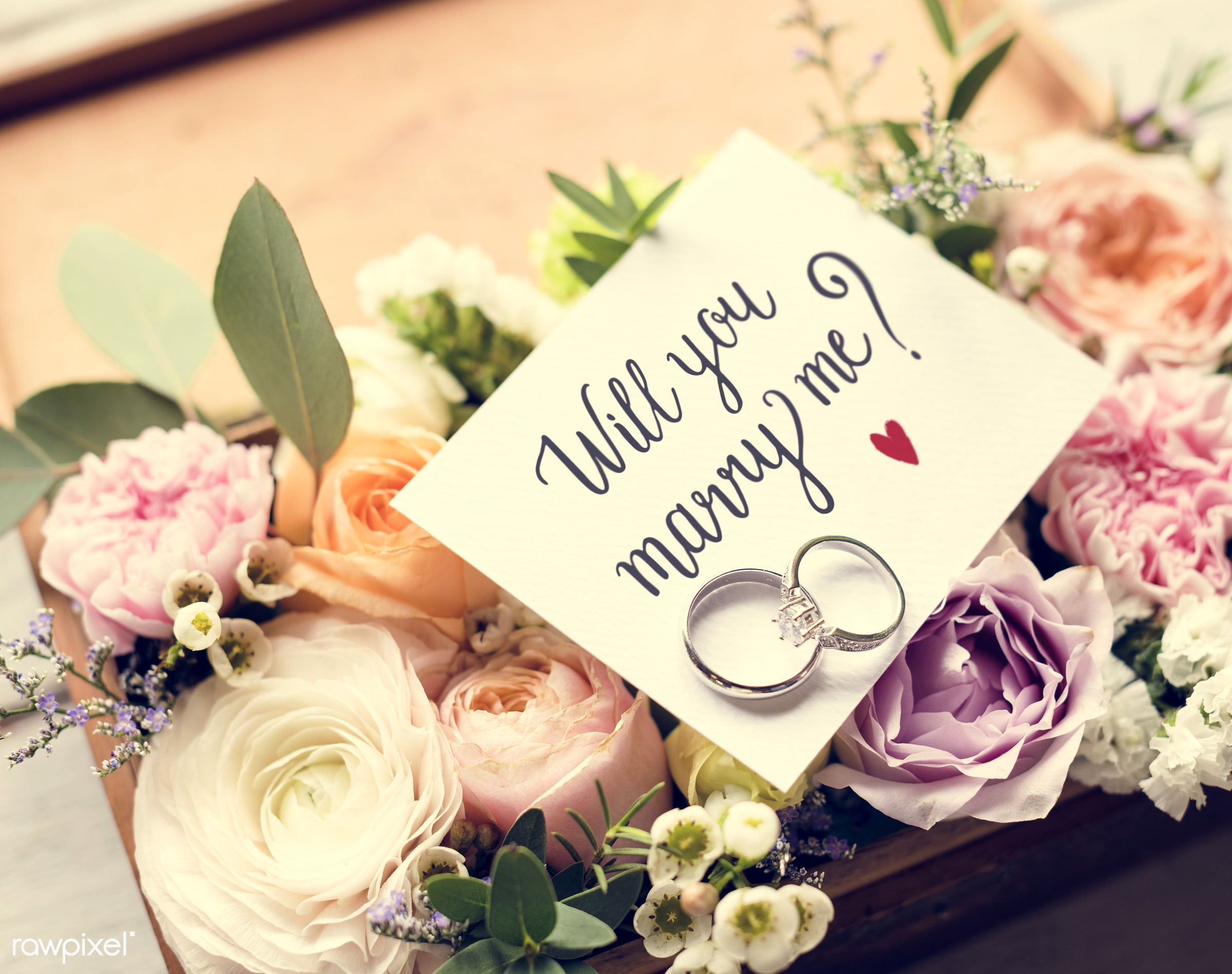 expression, bouquet, nobody, smitten, together, wax flower, love, gather, propose, bush, rings, flowers, cheerful, marry,...