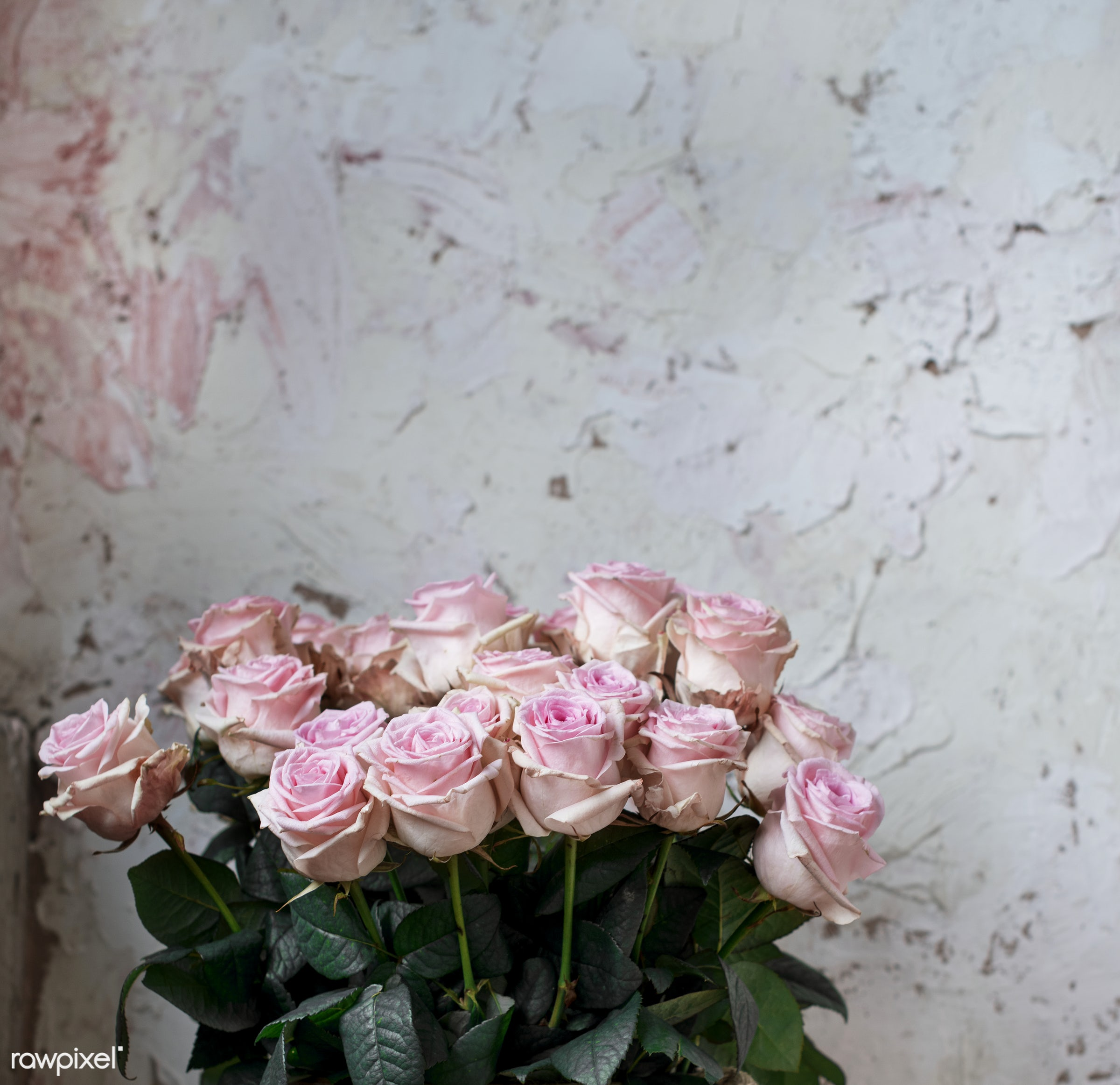 Closeup of a bouquet of roses - bunch, real, bouquet, fresh, flowers, natural, closeup, roses, leaves, pink
