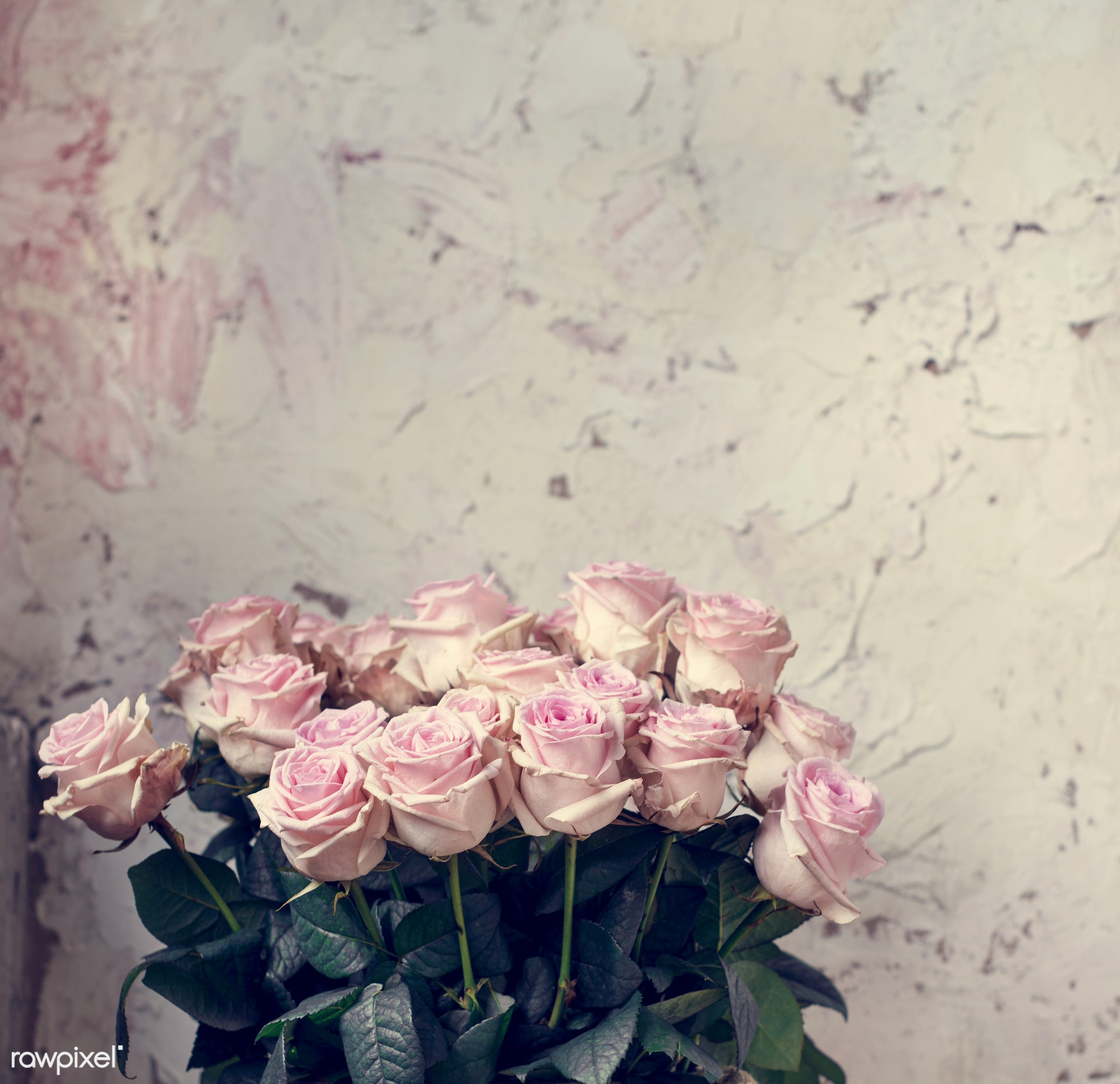 bouquet, nobody, detail, rustic, nature, metal, pink, flowers, cheerful, flower, refreshment, wallpaper, present,...