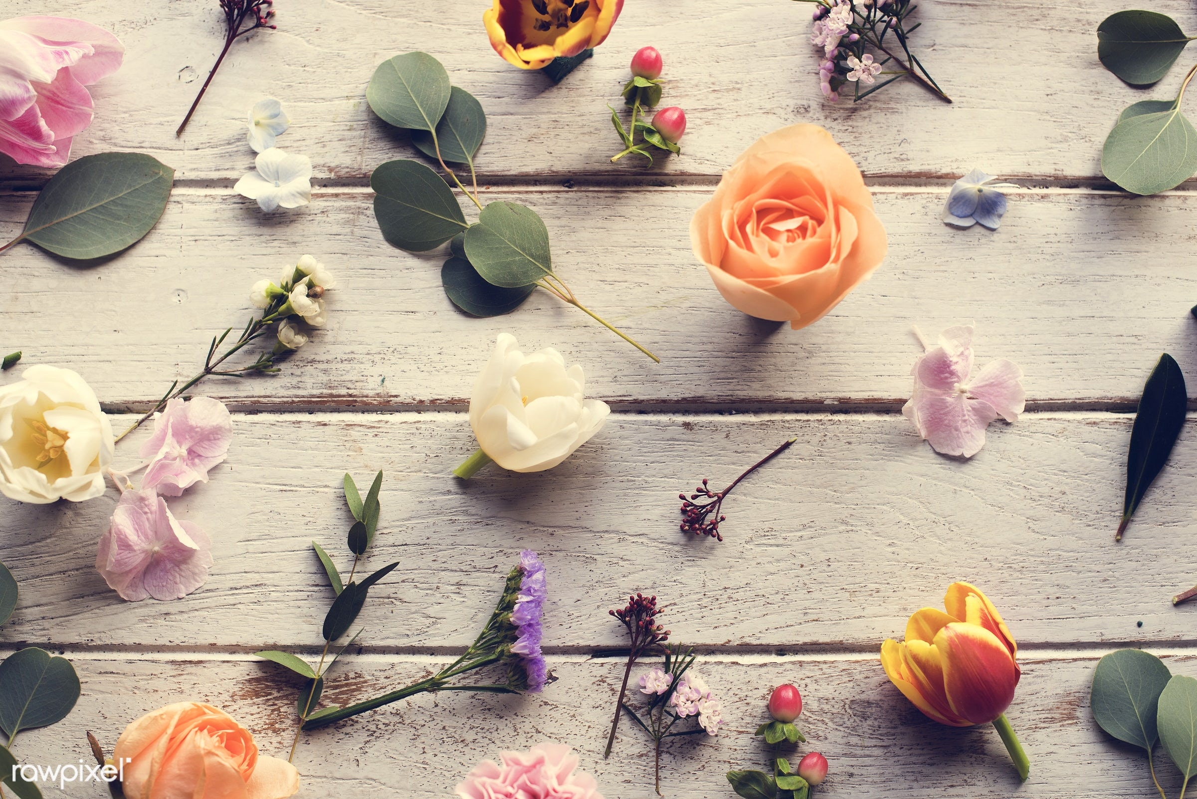 plant, bouquet, decorative, leaf, blossom, decor, fresh, foliage, flowers, cheerful, flower, romance, decoration, flora,...