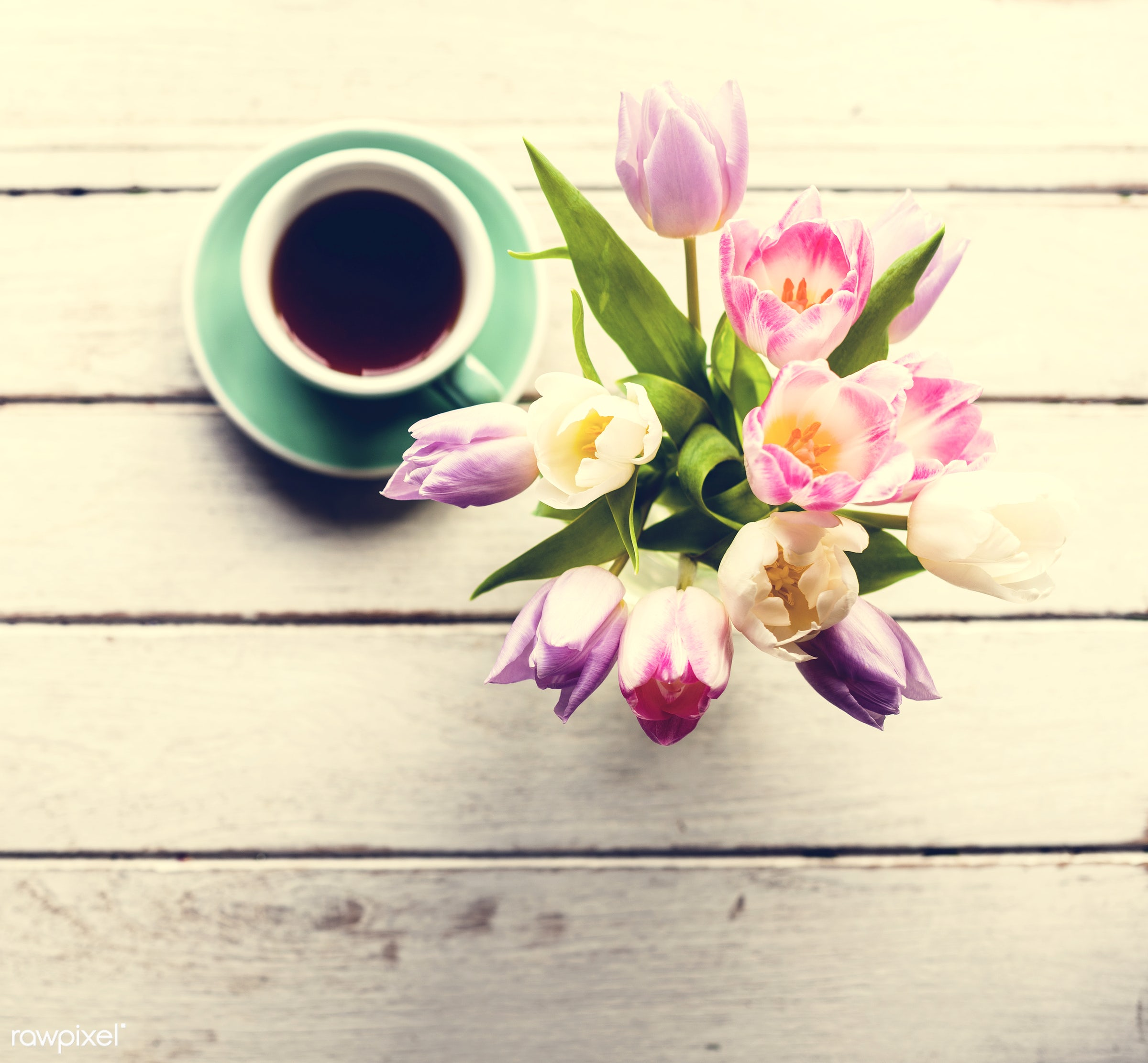 cup, nobody, detail, leaf, leaves, decor, nature, pink, flowers, refreshment, coffee, white, florist, present, arrangement,...
