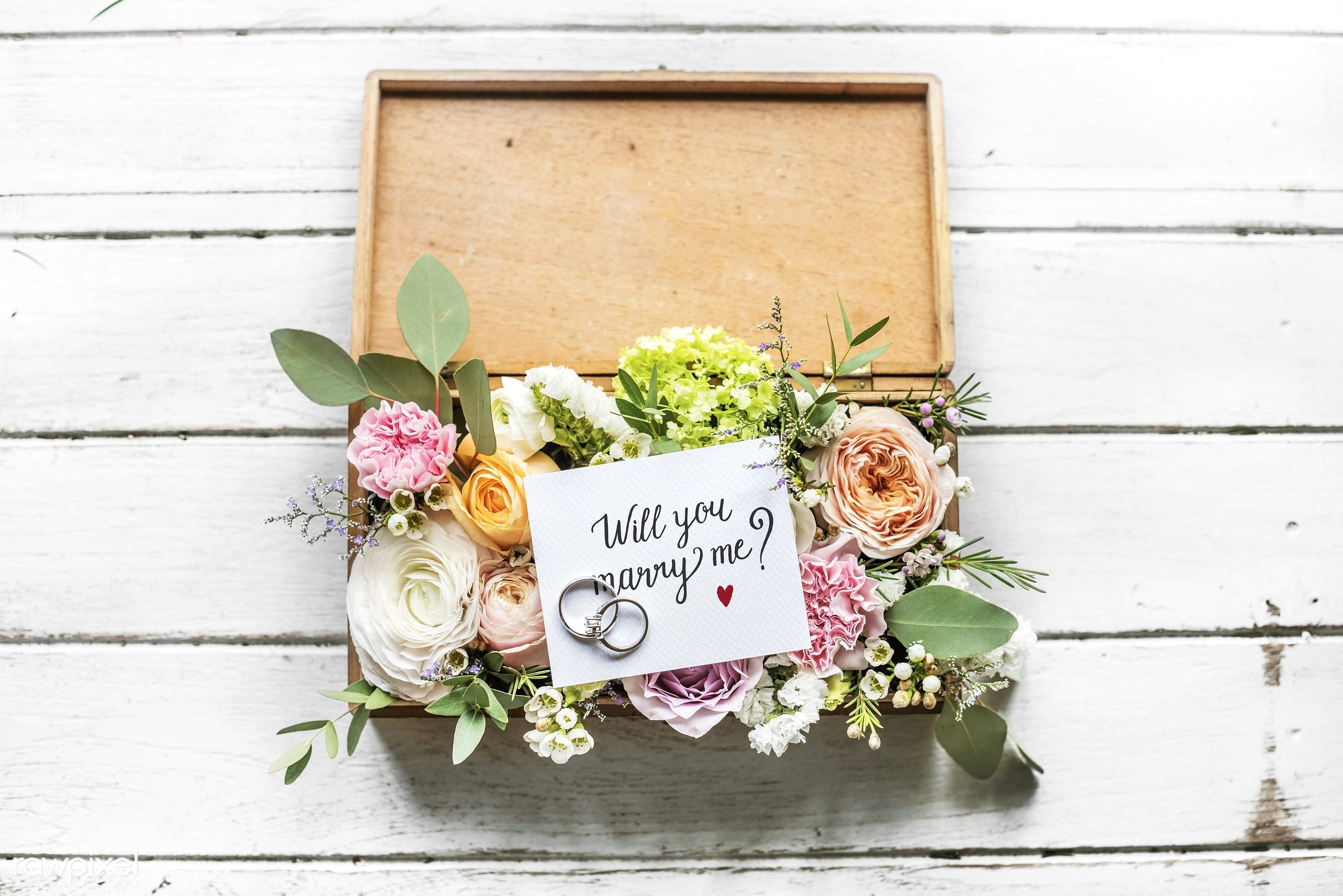 expression, bouquet, nobody, smitten, together, love, cherish, propose, intimate, lifestyle, card, bush, rings, flowers,...