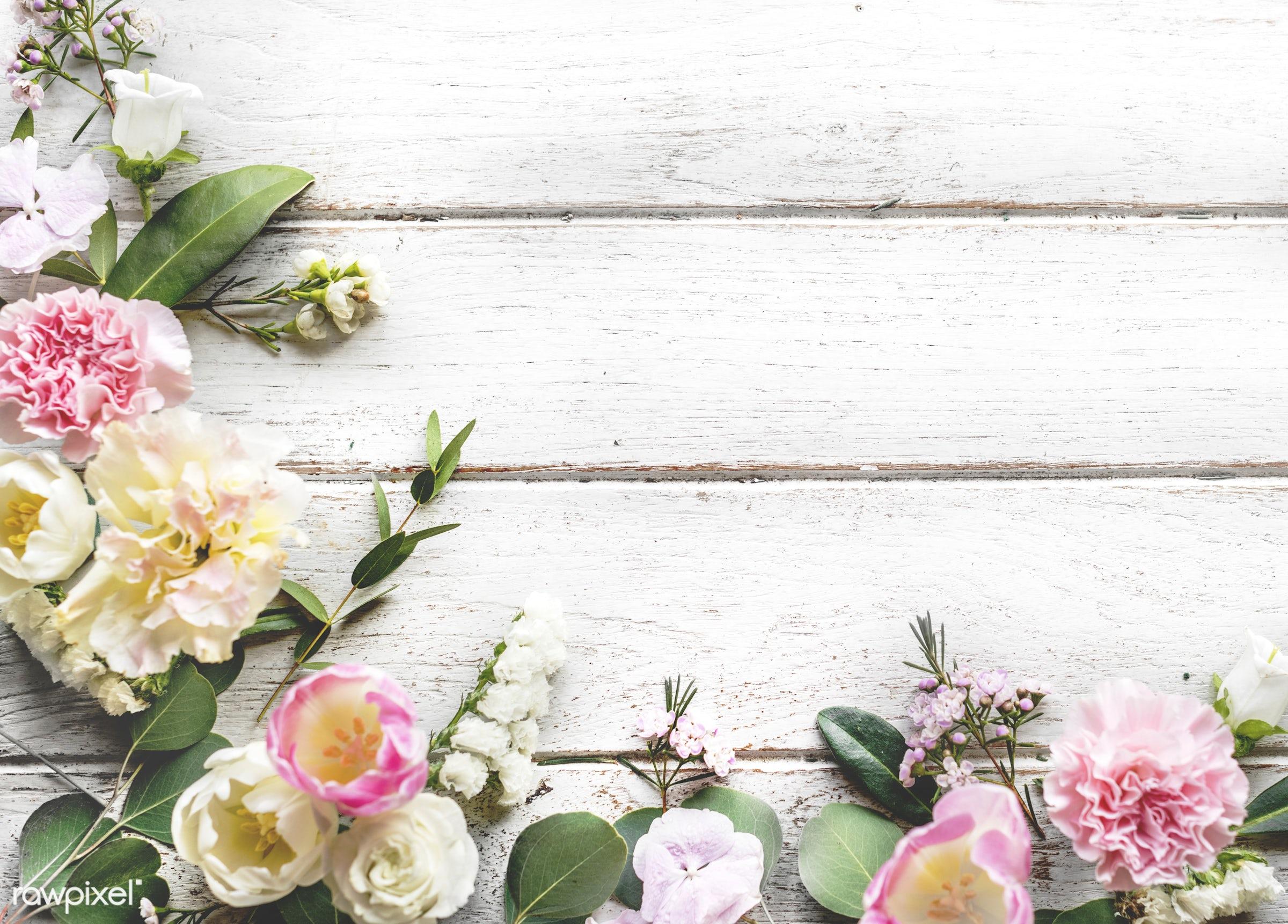 Design space with floral border - blank, border, copy space, decoration, design, design space, feminine, floral, flower,...