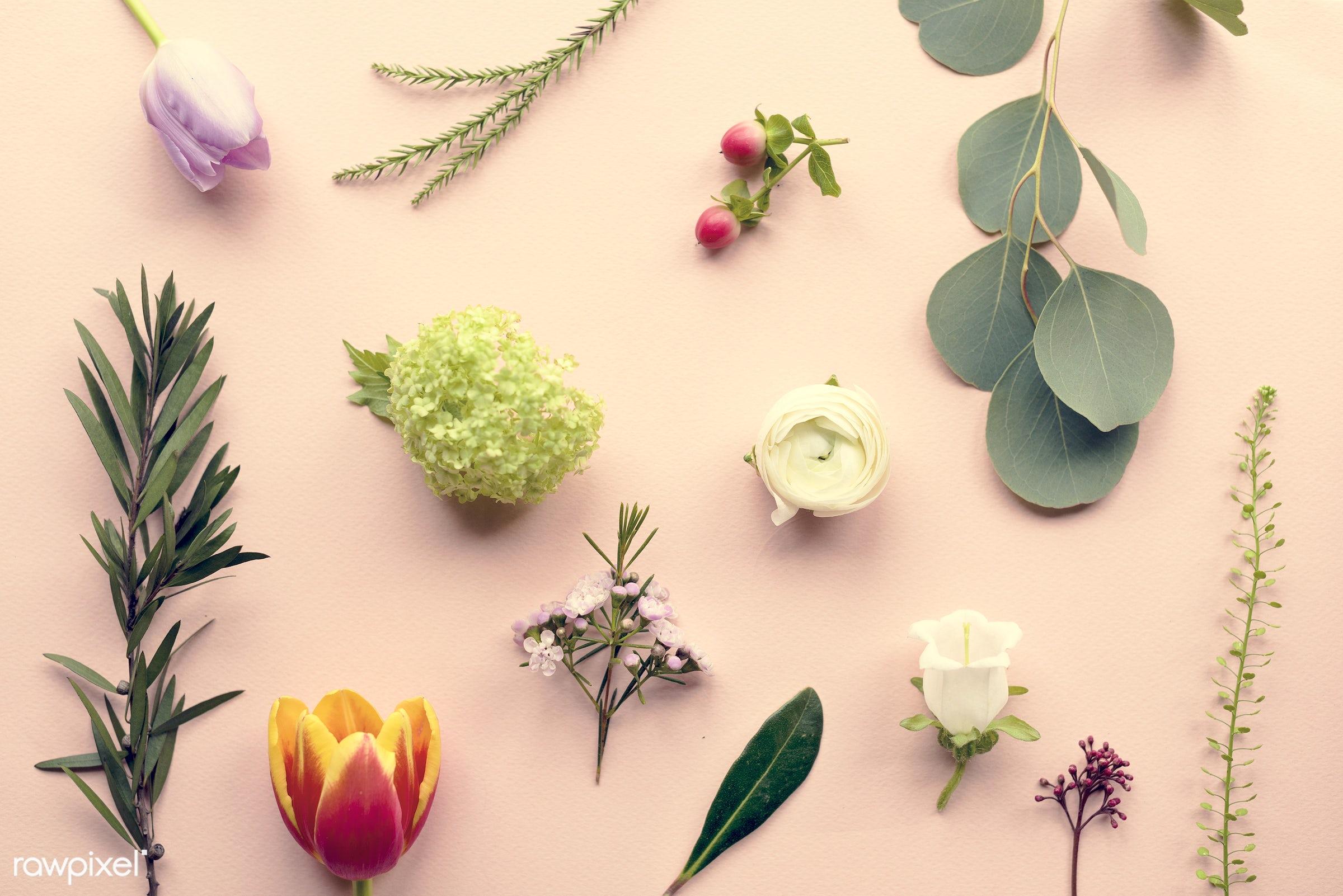 nobody, detail, handicraft, leaf, leaves, nature, pink, flowers, cheerful, flower, art, refreshment, present, arrangement,...
