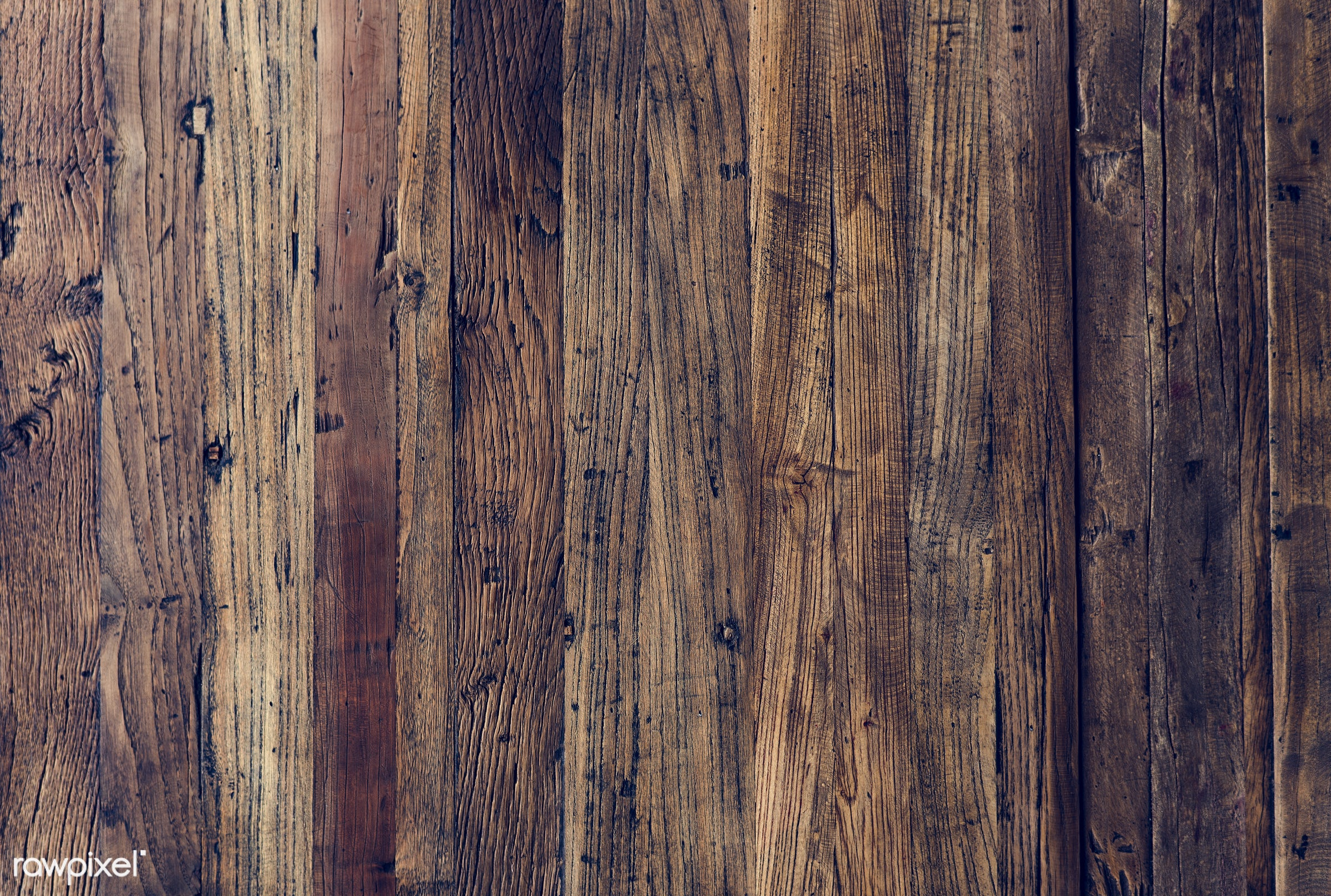 nobody, copy space, detail, surface, wood, decorative, retro, plank, show, space, decor, grunge, nature, attractive, bark,...
