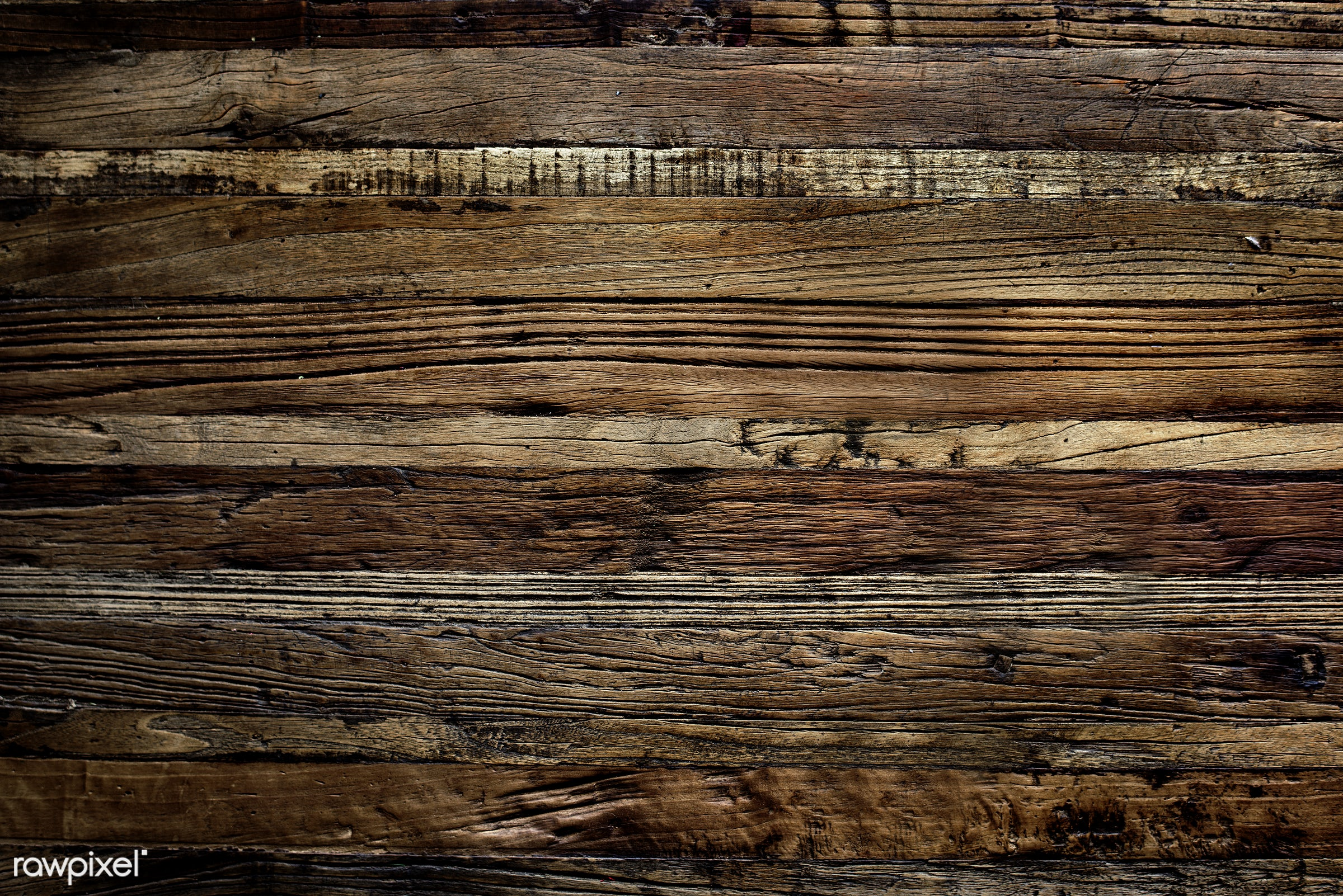 nobody, detail, copy space, surface, decorative, wood, plank, retro, show, space, decor, grunge, nature, attractive, bark,...