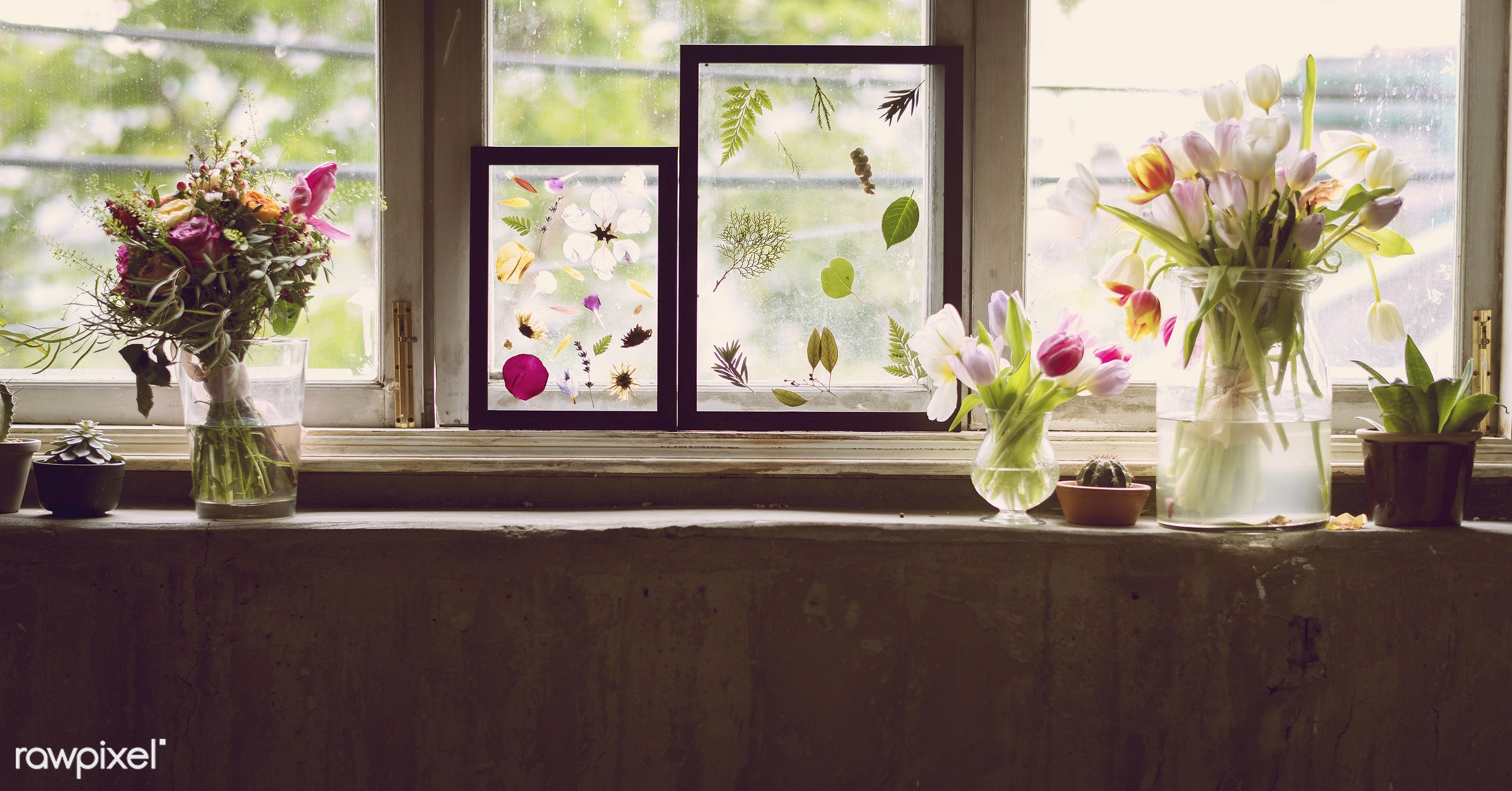 plant, bouquet, decorative, botany, plants, romance, spring, blossom, nature, fresh, flower, anniversary, blooming,...