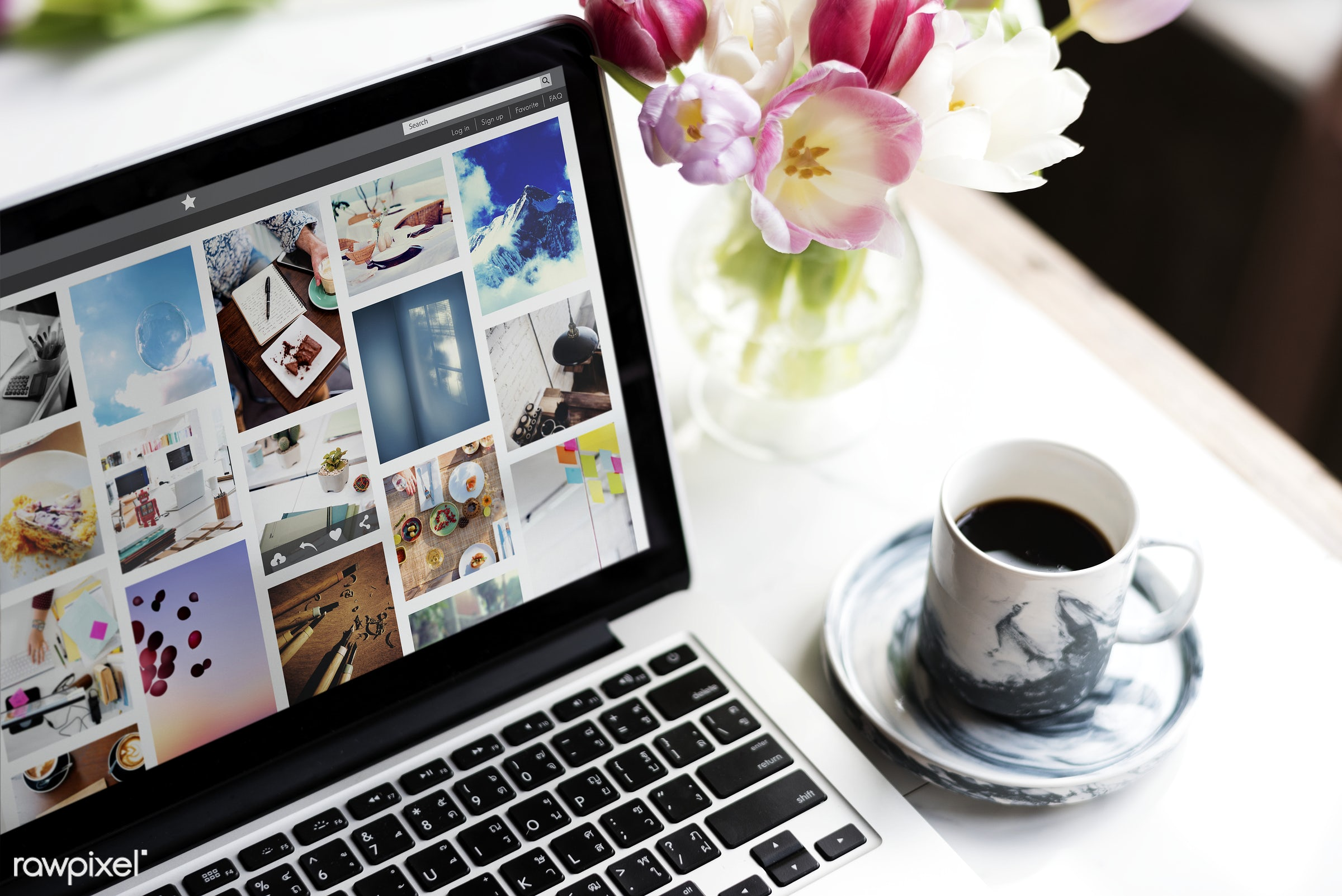 Photo Gallery Screen on laptop - laptop, coffee, notebook, working, attach, attached, beverage, colorful, cup, desktop,...